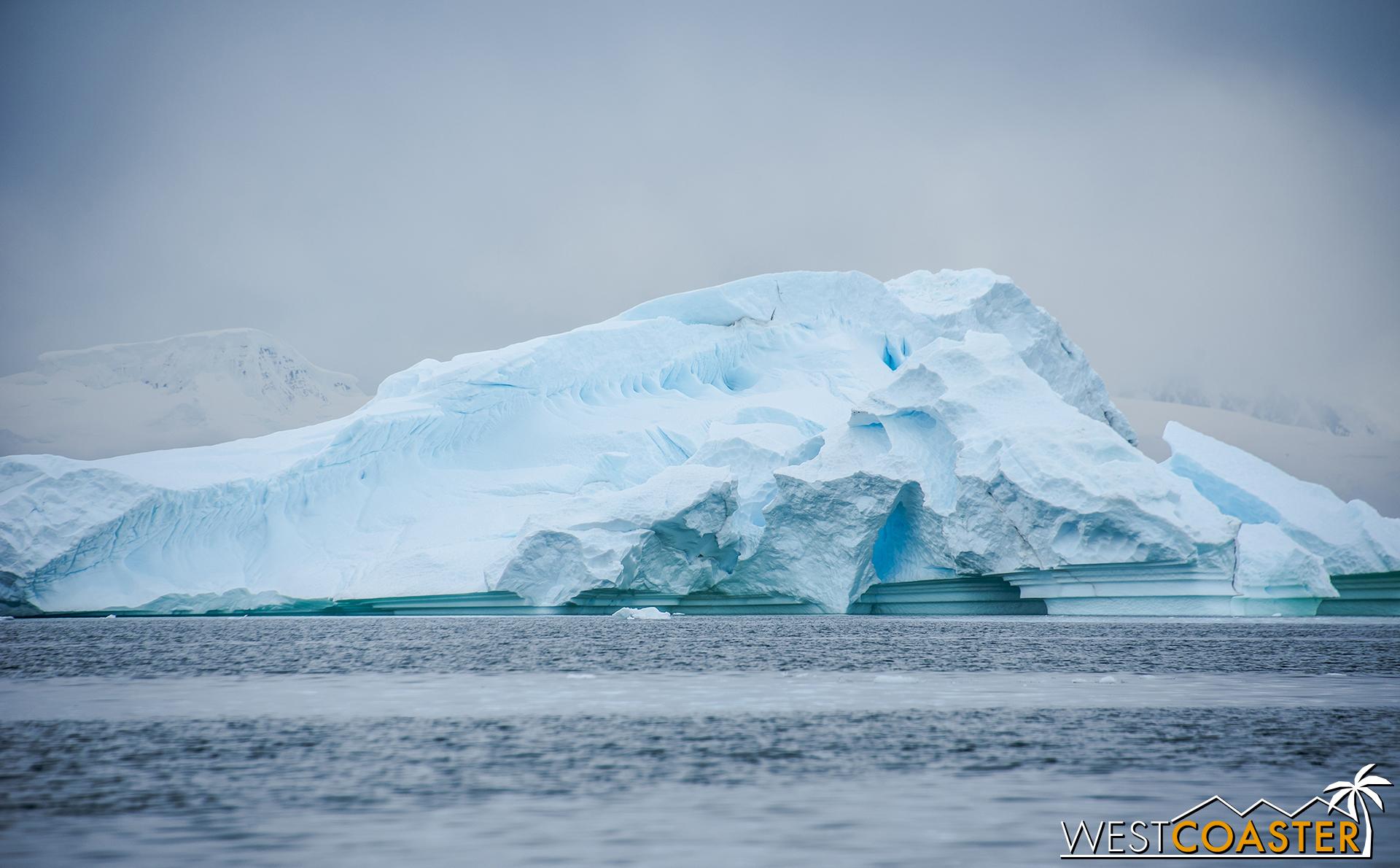 Antarctica-18_0314-0011.jpg