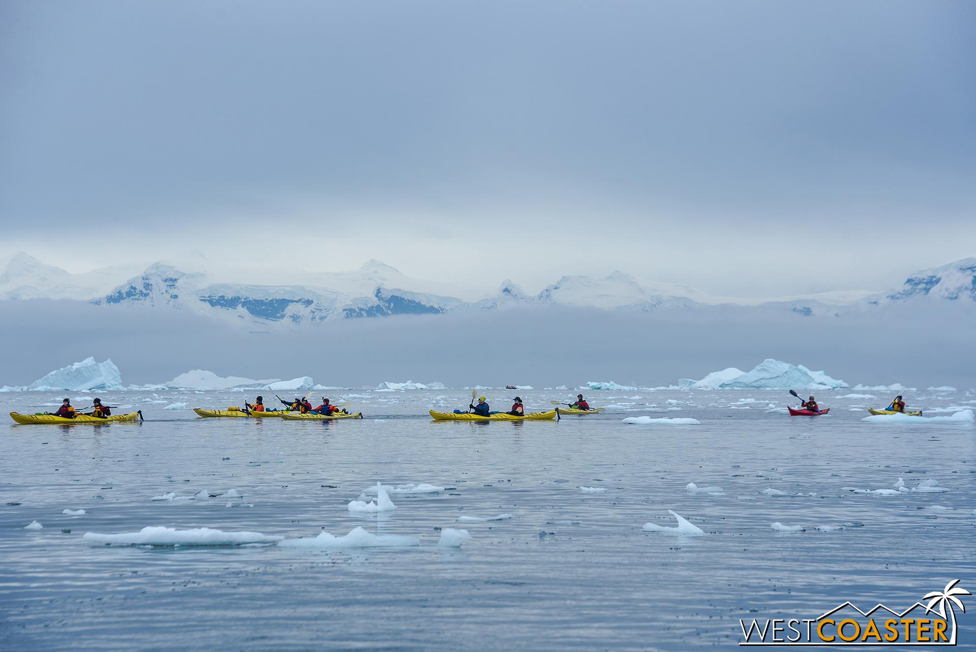 Antarctica-18_0314-0024.jpg