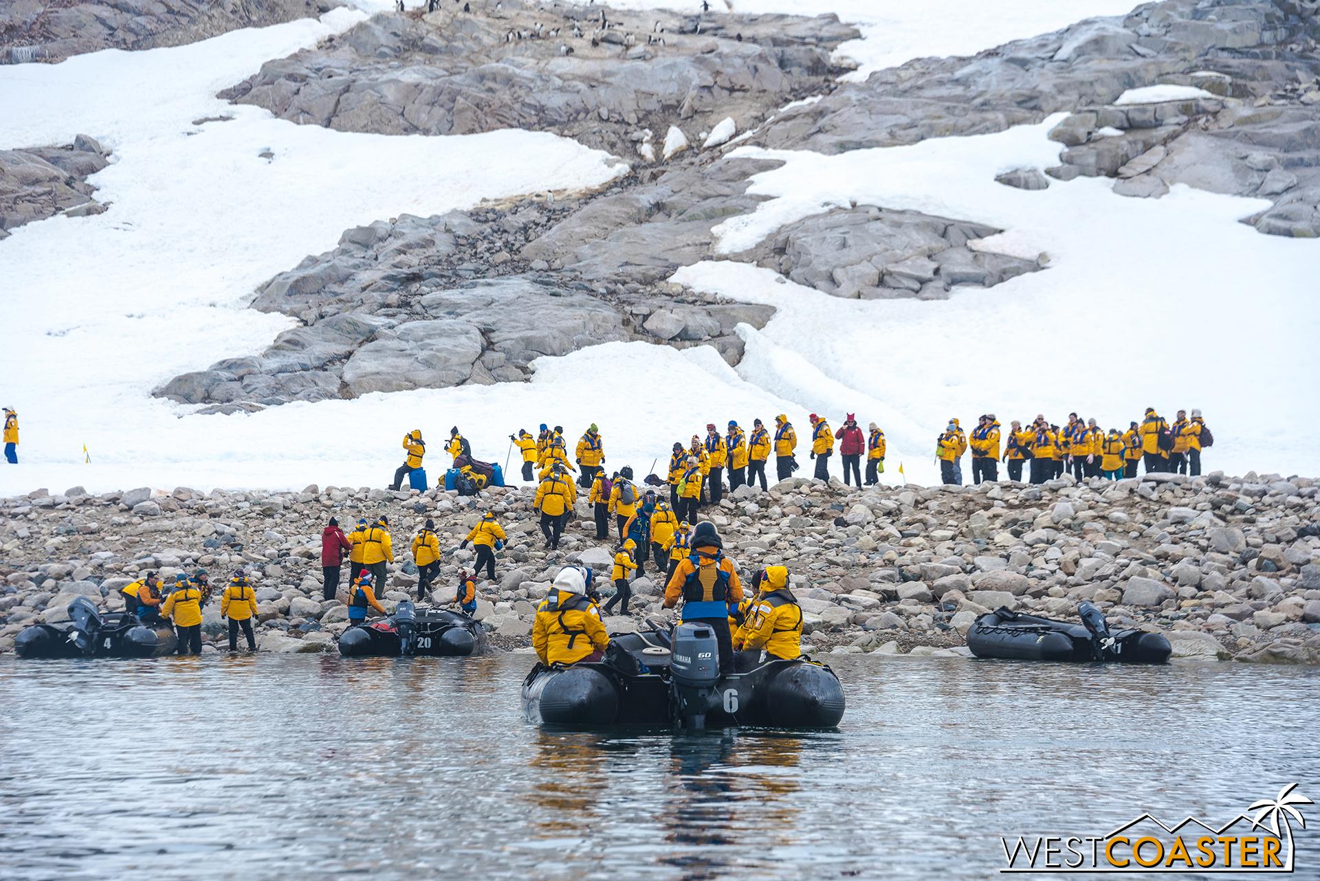 Antarctica-18_0314-0043.jpg