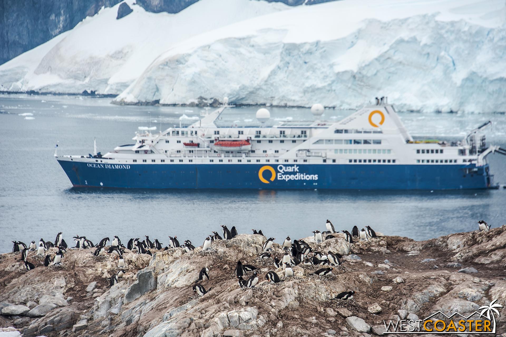 Antarctica-18_0314-0065.jpg