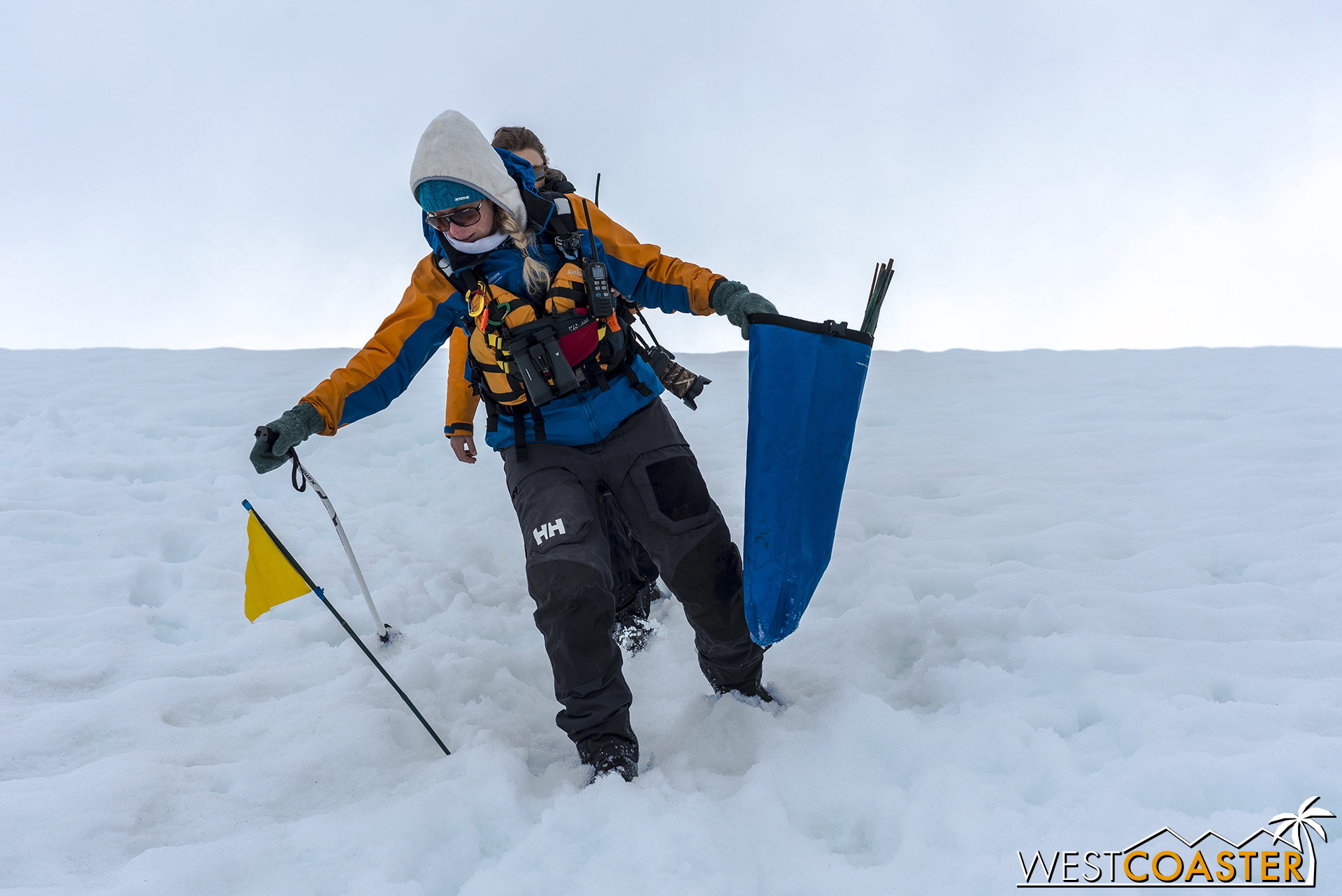 The expedition guides collect the trail marking flags on the way down.