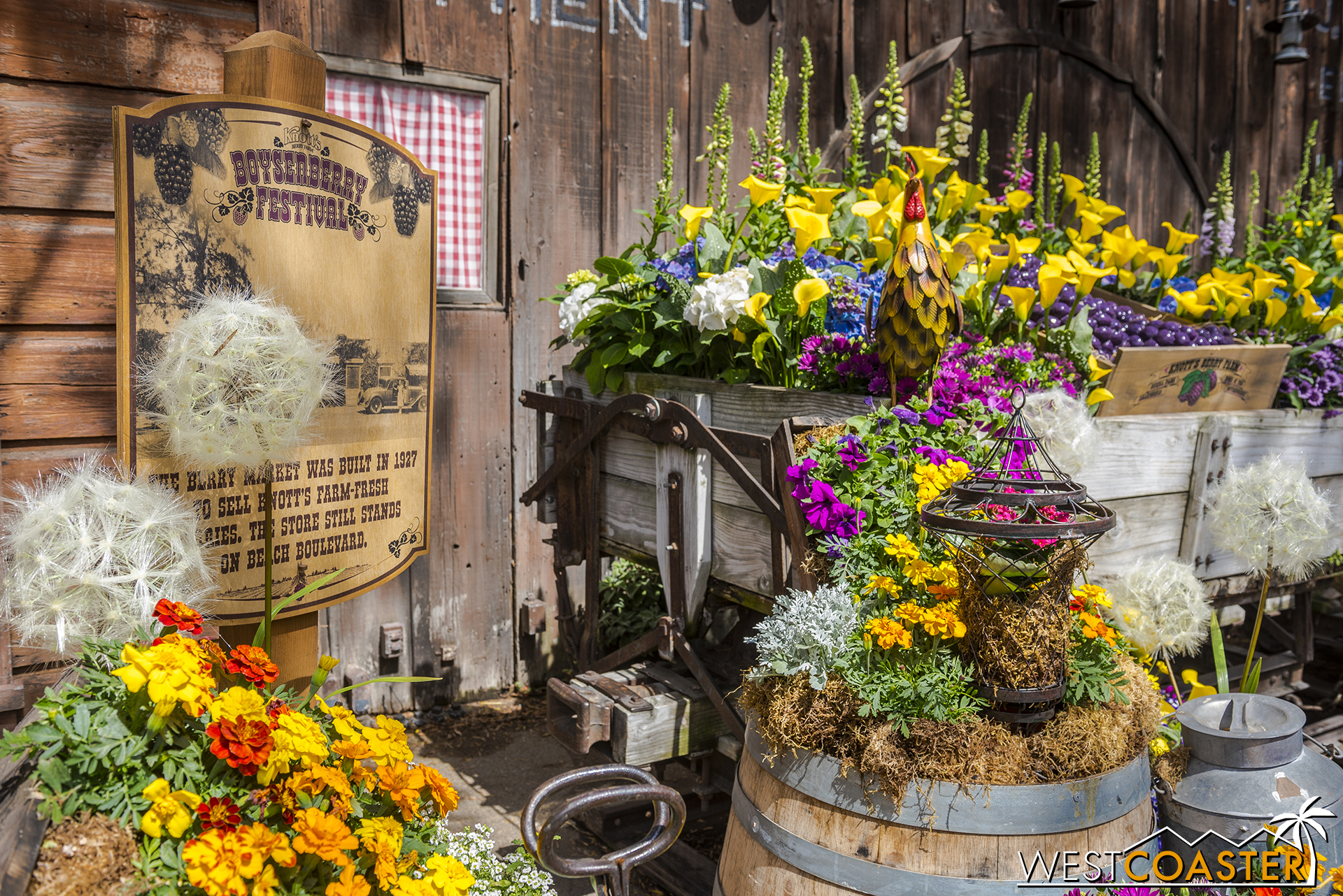 Spring is all over the air at Knott's Boysenberry Festival!