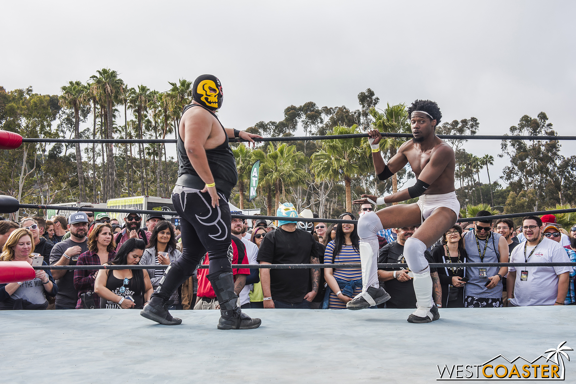 SabrosoFest-18_0410-E-Wrestling-0073.jpg