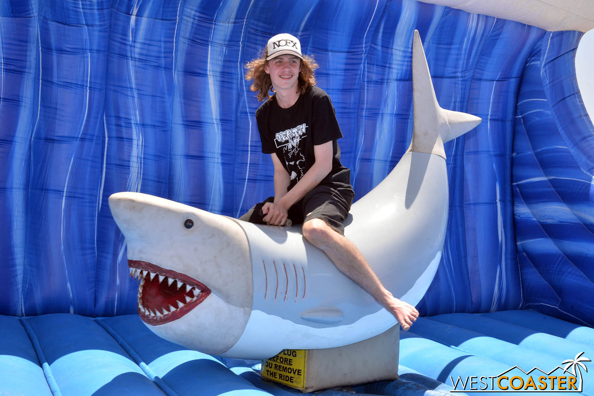 Don't like board games? Go ride a shark.