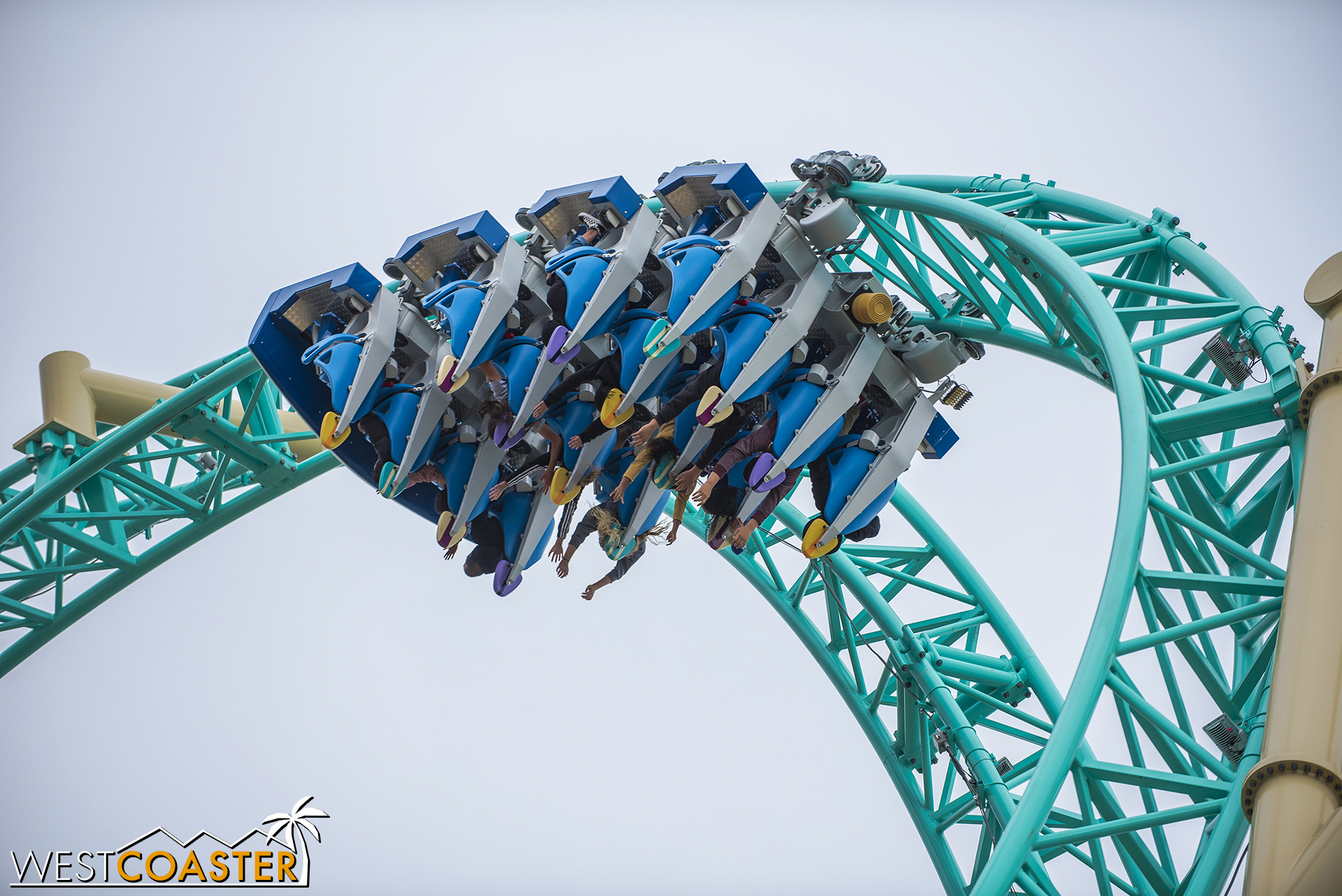 Love all the great photographic angles that HangTime offers.