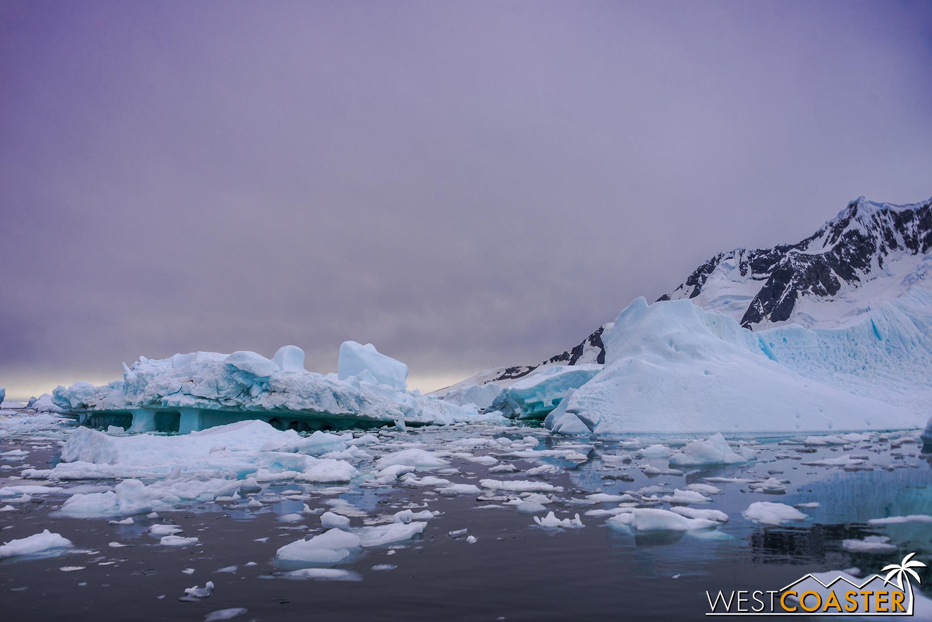 Antarctica-18_0609-0028.jpg