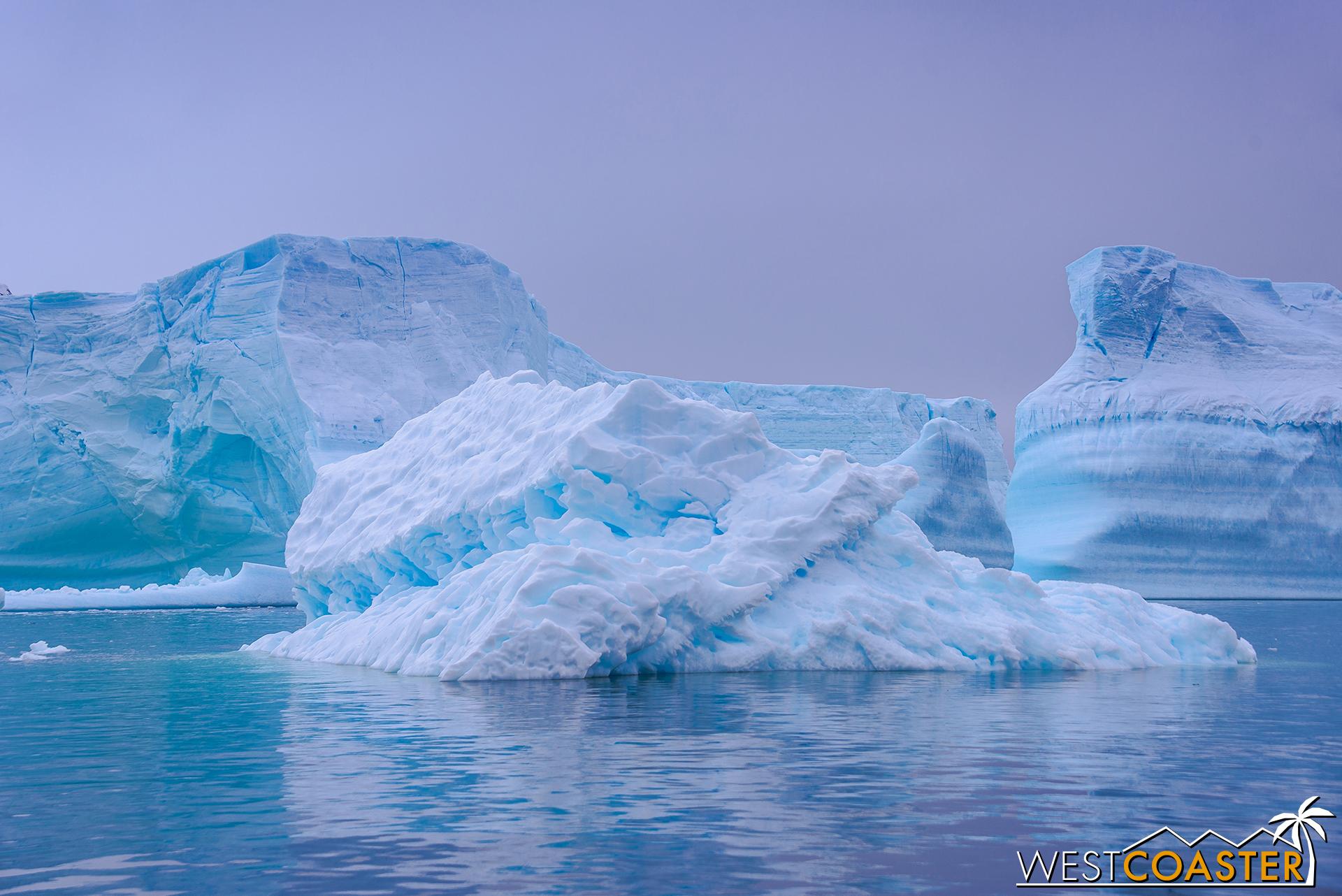 Antarctica-18_0609-0030.jpg