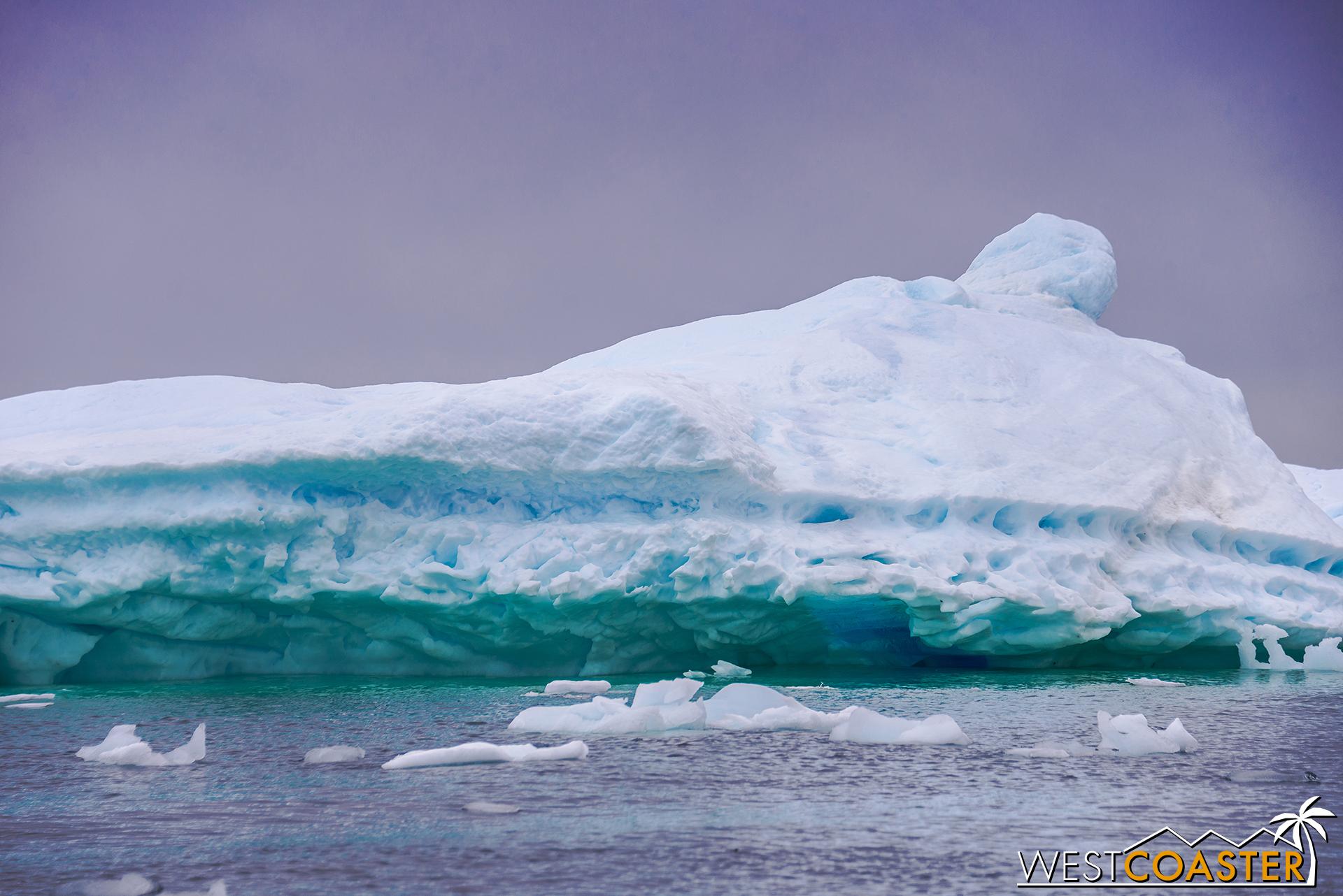 Antarctica-18_0609-0032.jpg