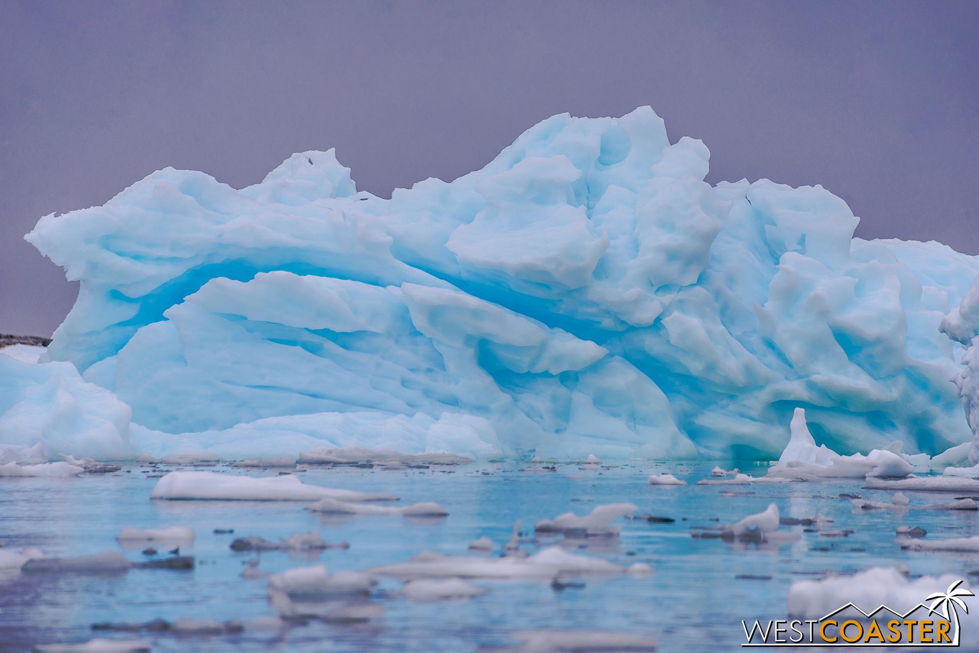 Antarctica-18_0609-0033.jpg