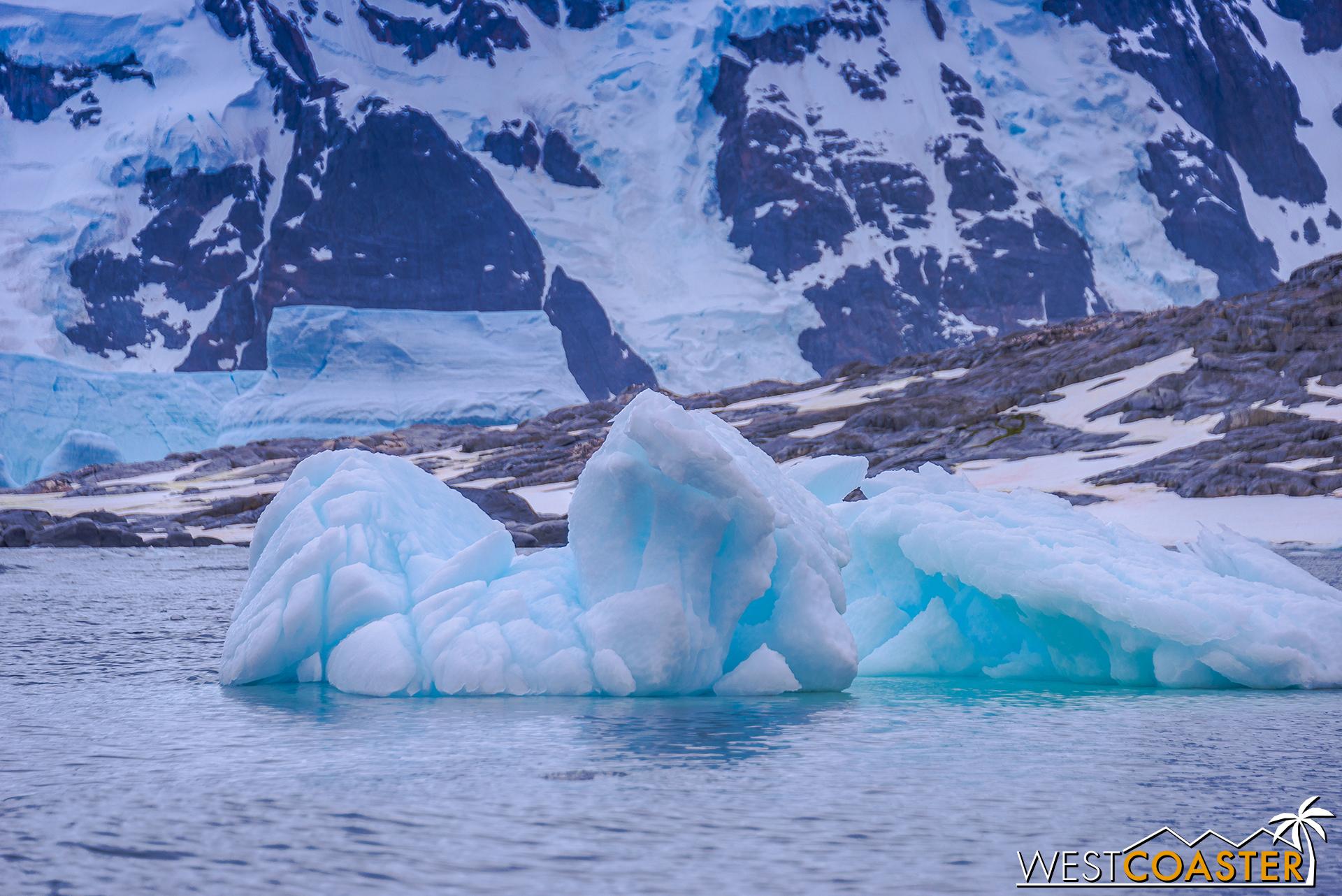 Antarctica-18_0609-0038.jpg
