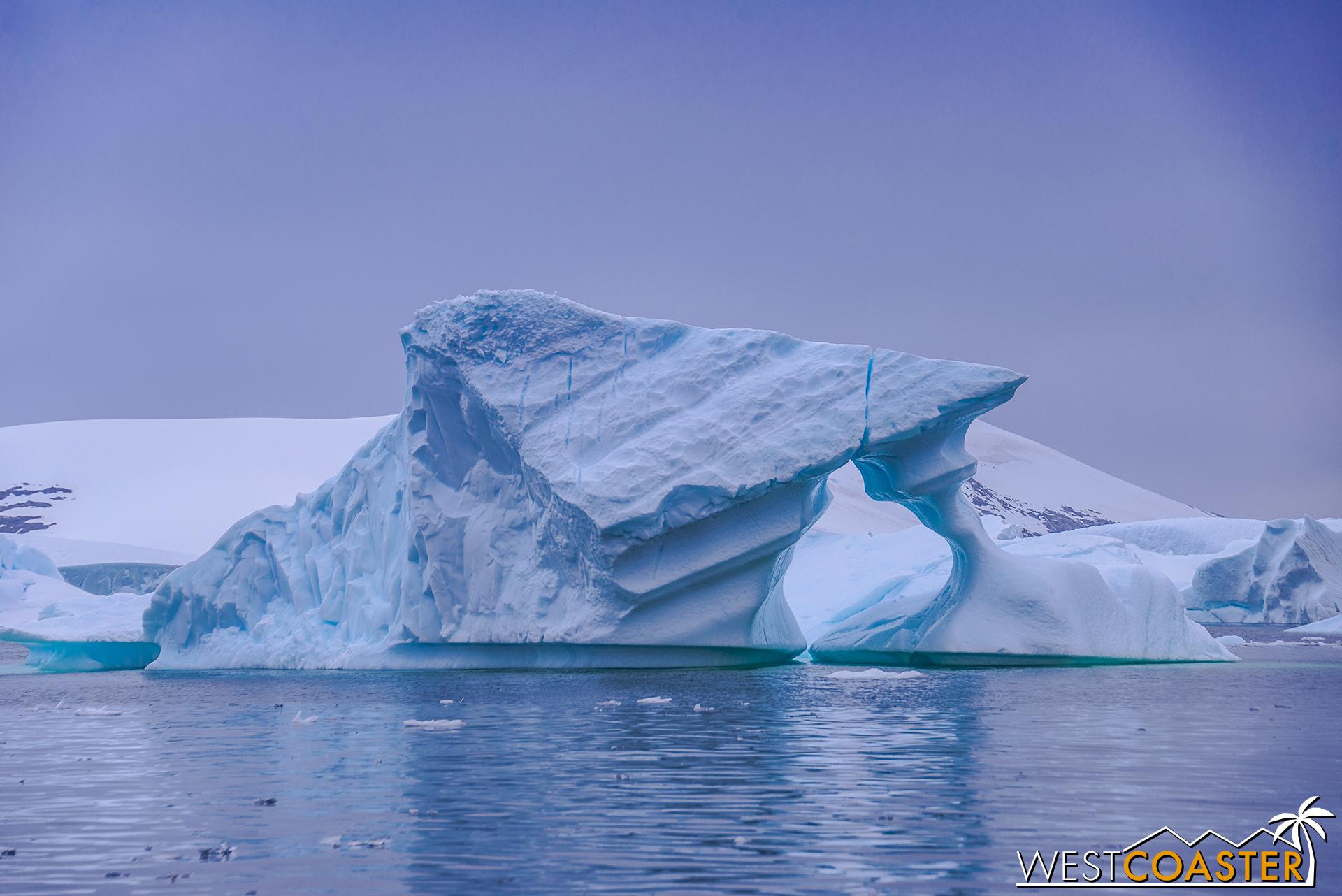 Antarctica-18_0609-0040.jpg
