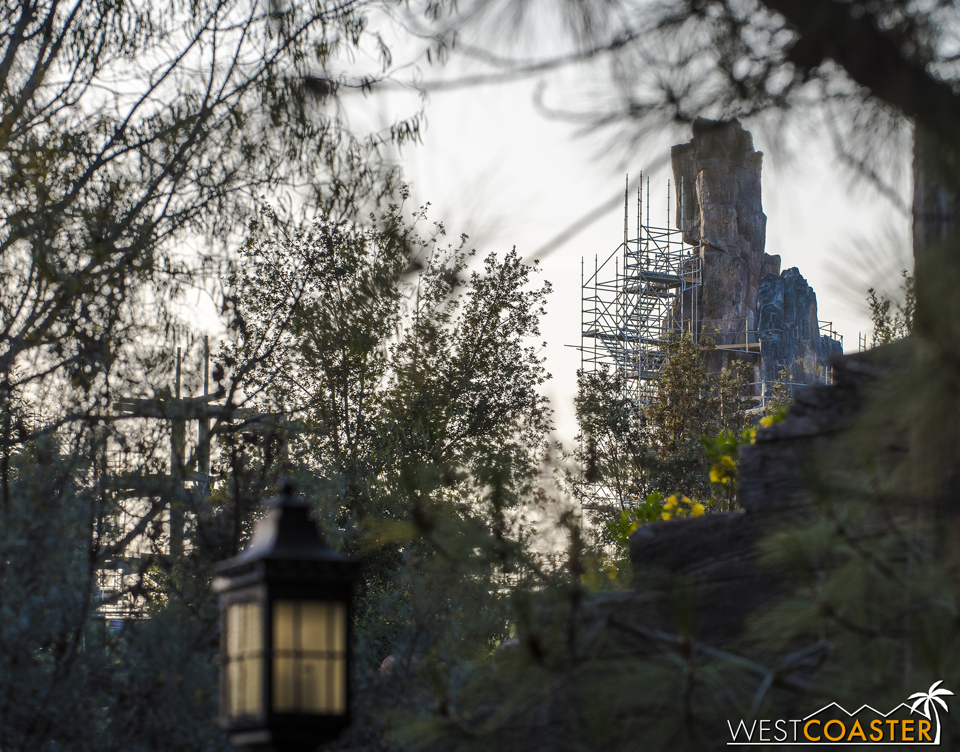 But they peek through over the former Big Thunder Trail.