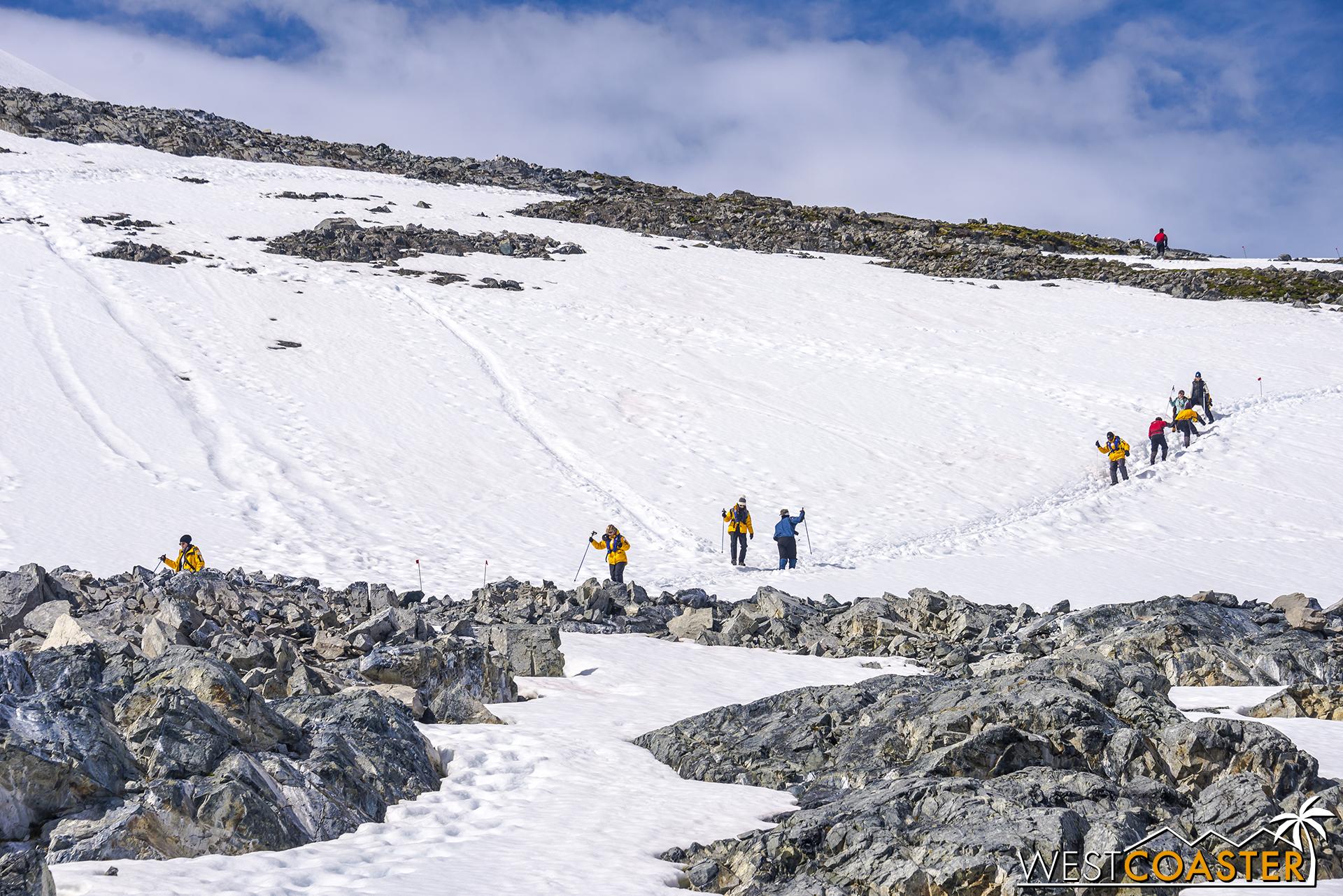 Antarctica-18_0726-0045.jpg
