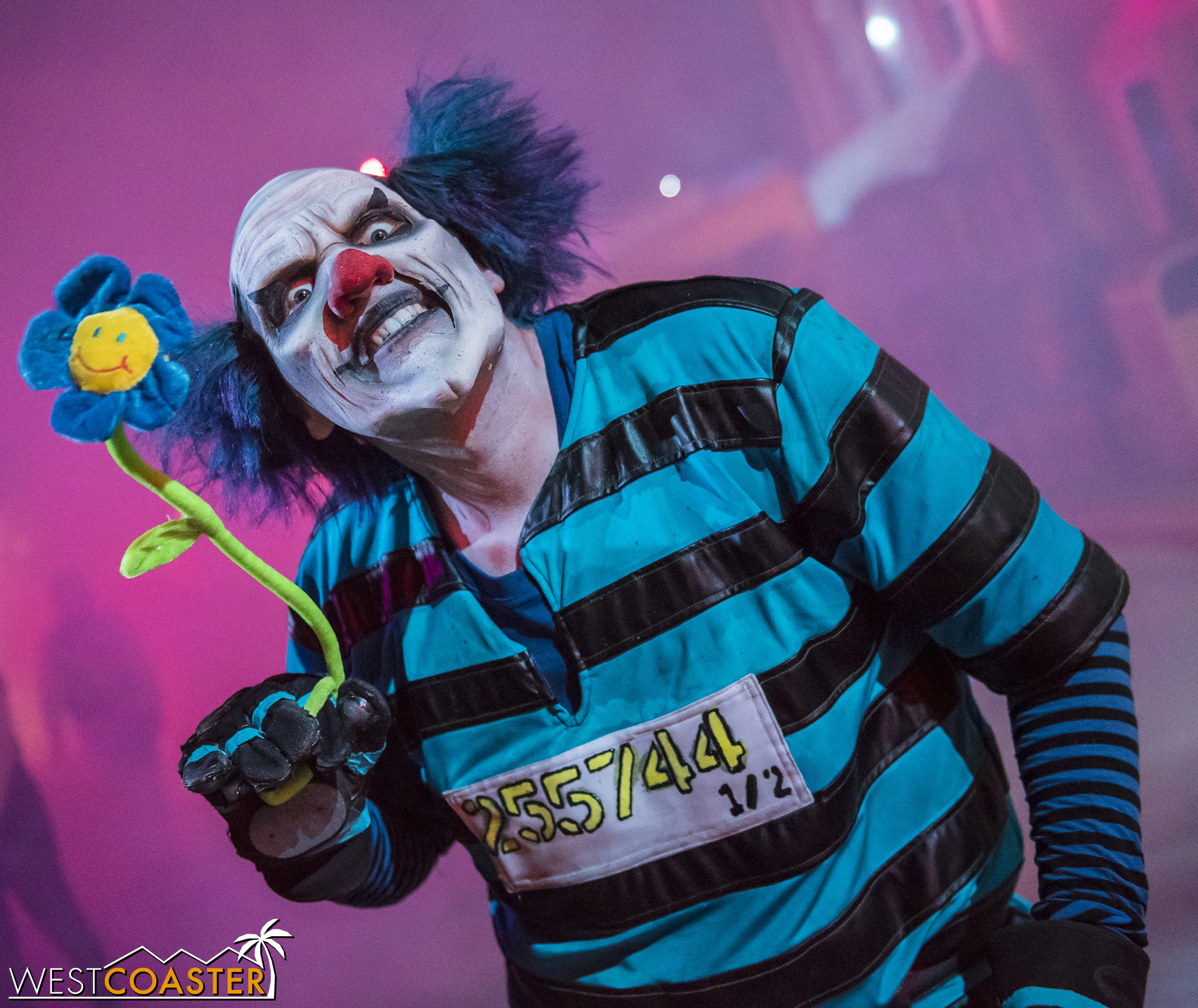 The clowns are back at City Under Siege! Some of them have flower power!