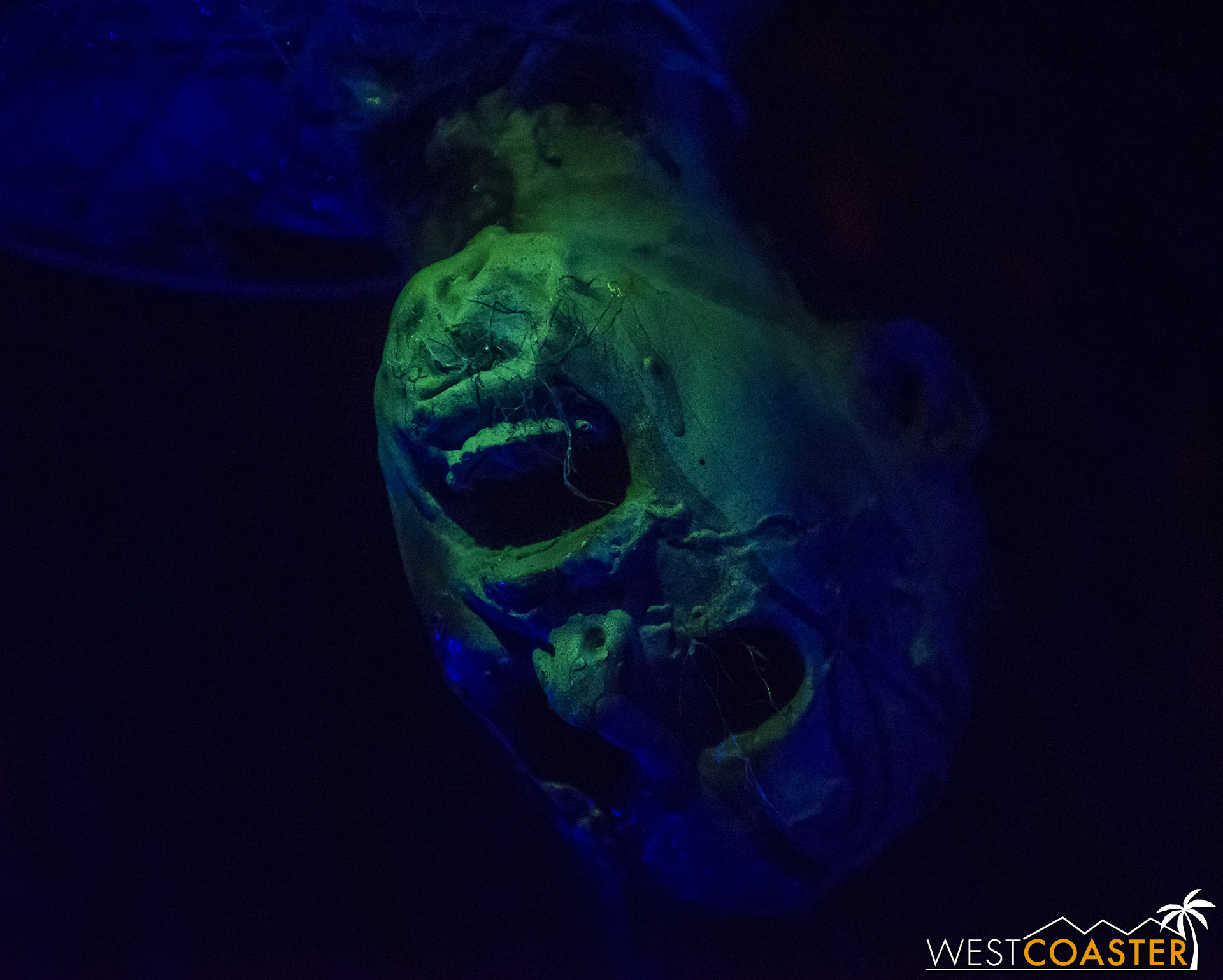 SpookyHollows-18_1031-0016.jpg