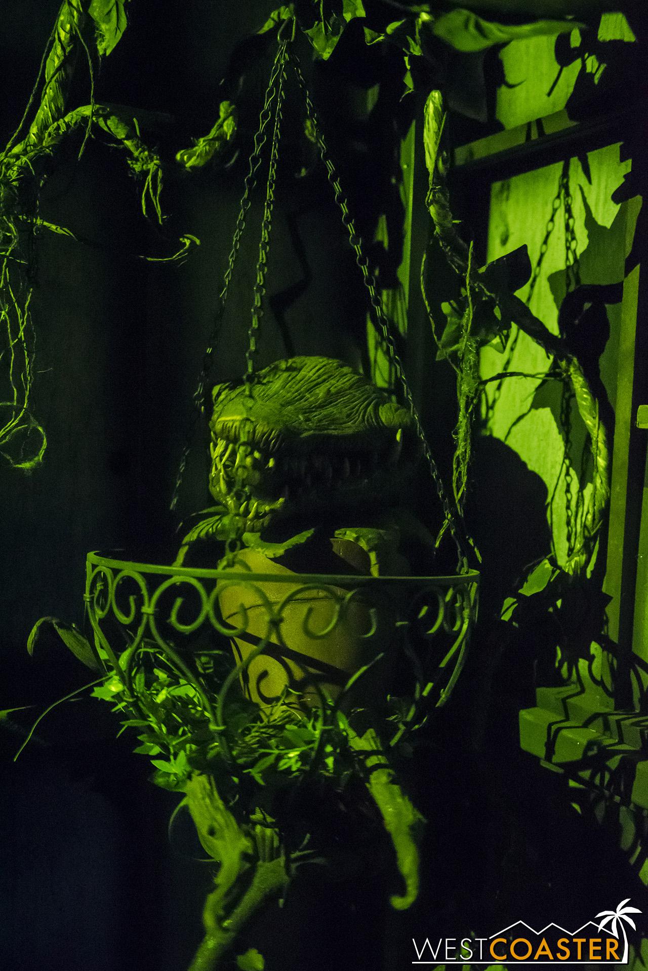 SpookyHollows-18_1031-0022.jpg