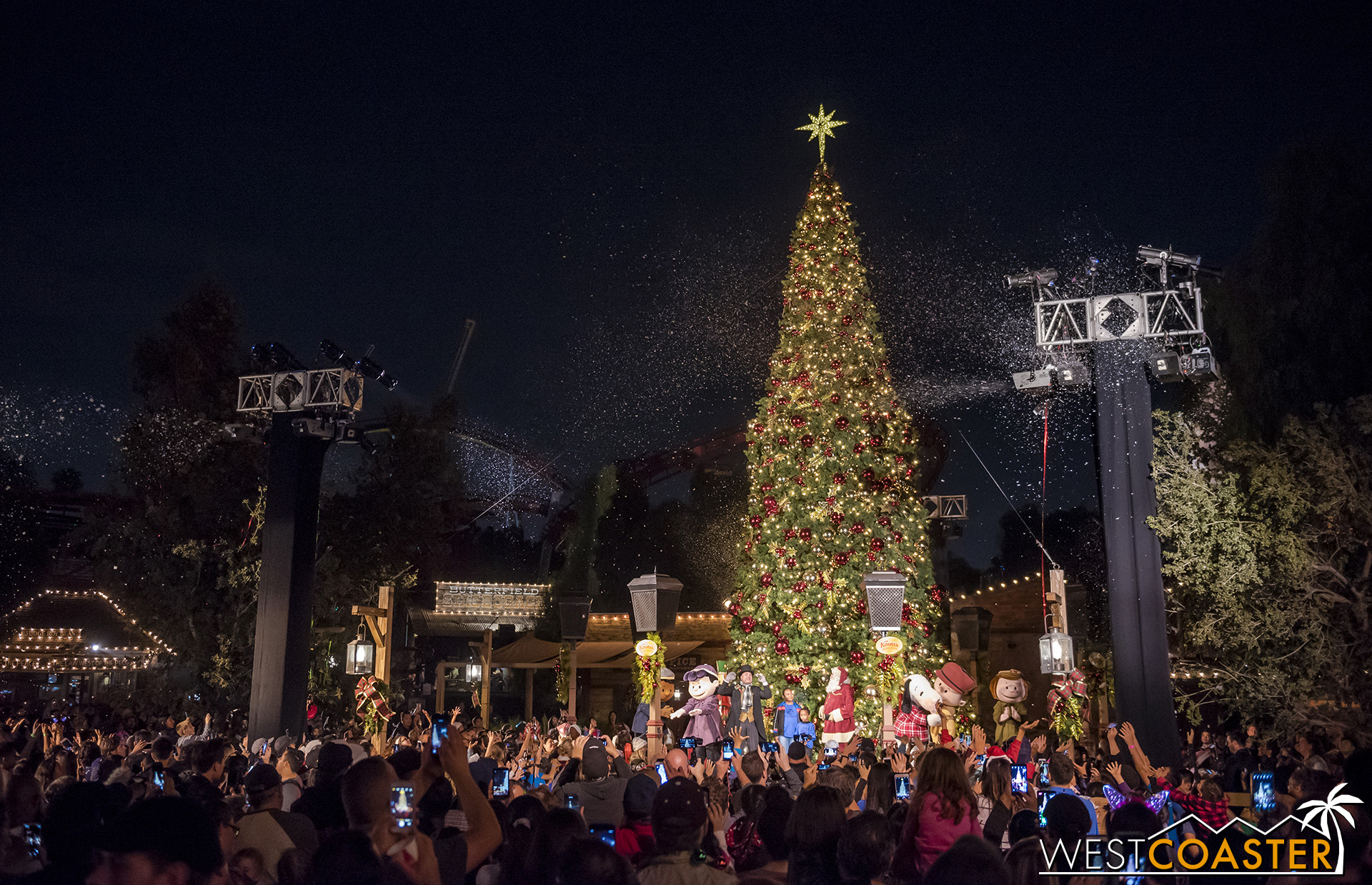 The tree lights up with the energy of the spirit of Christmas!