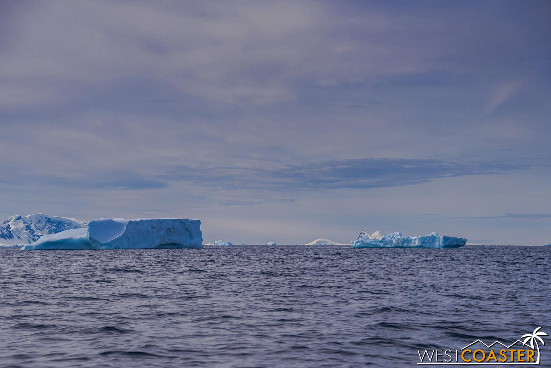 Antarctica-19_0114-B-WilheminaBay-0006.jpg