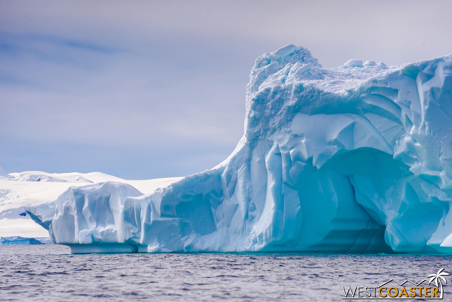 Antarctica-19_0114-B-WilheminaBay-0009.jpg