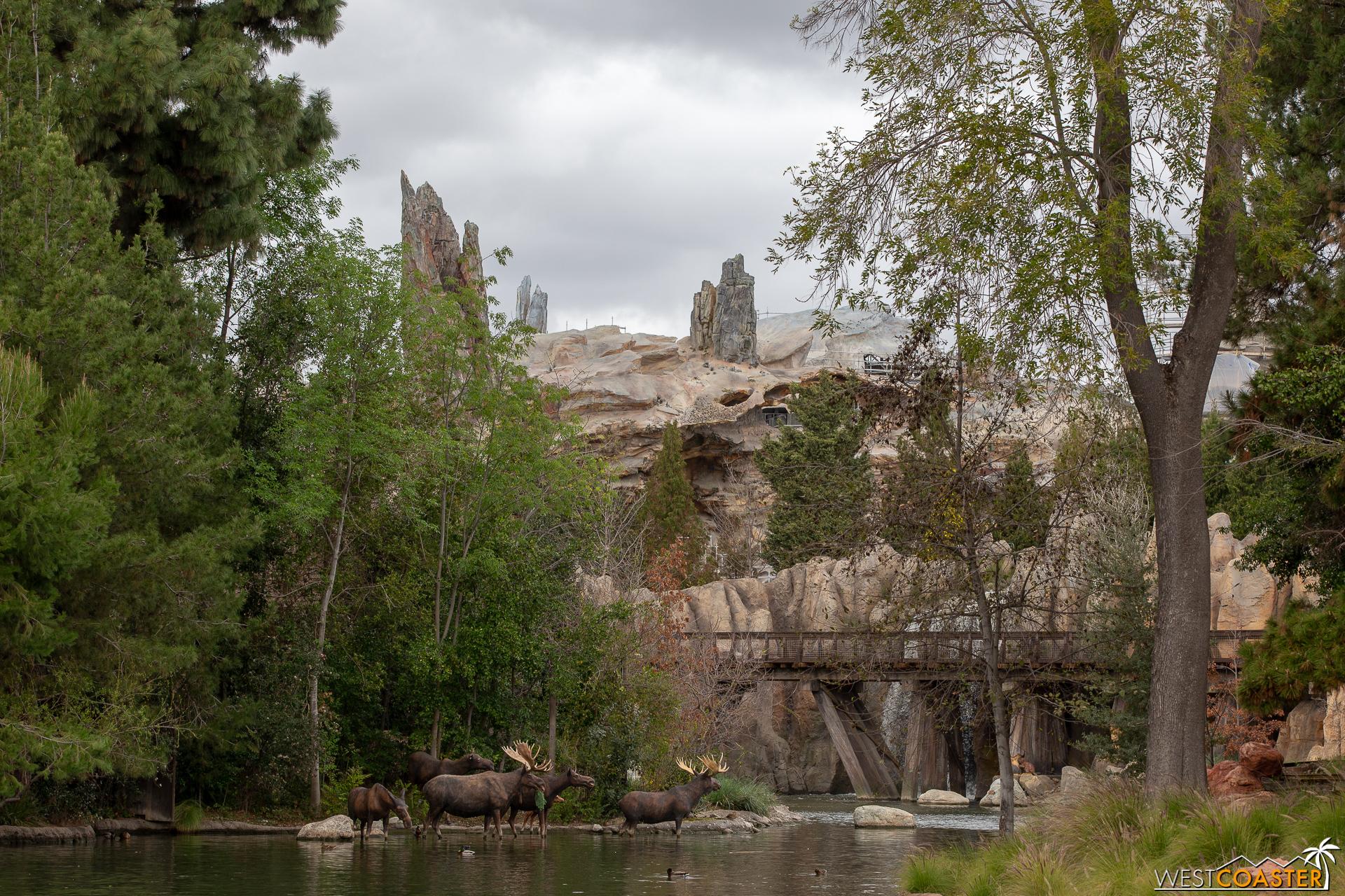 Westcoaster Disneyland Update 2-19-18.jpg