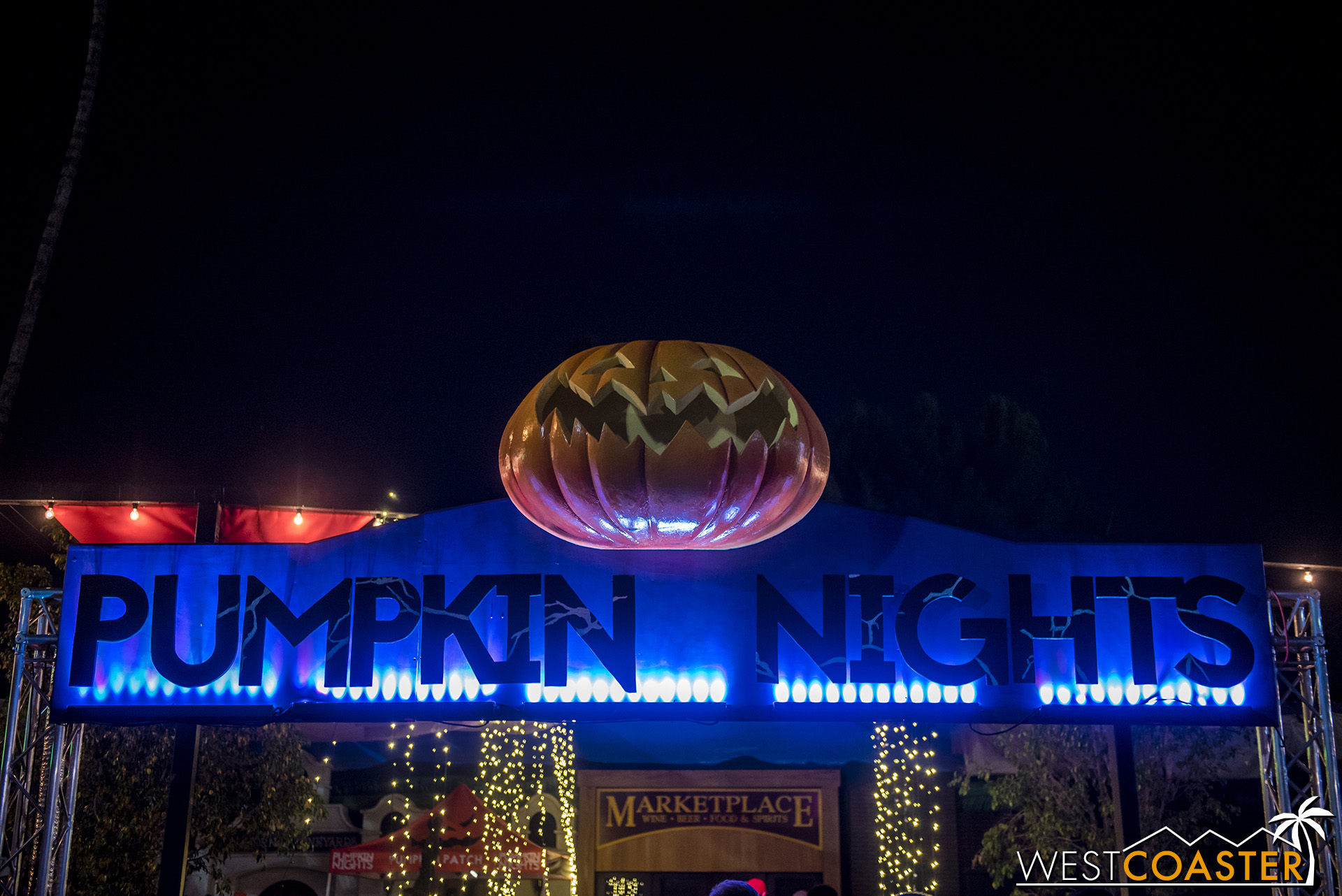 Entering Pumpkin Nights…