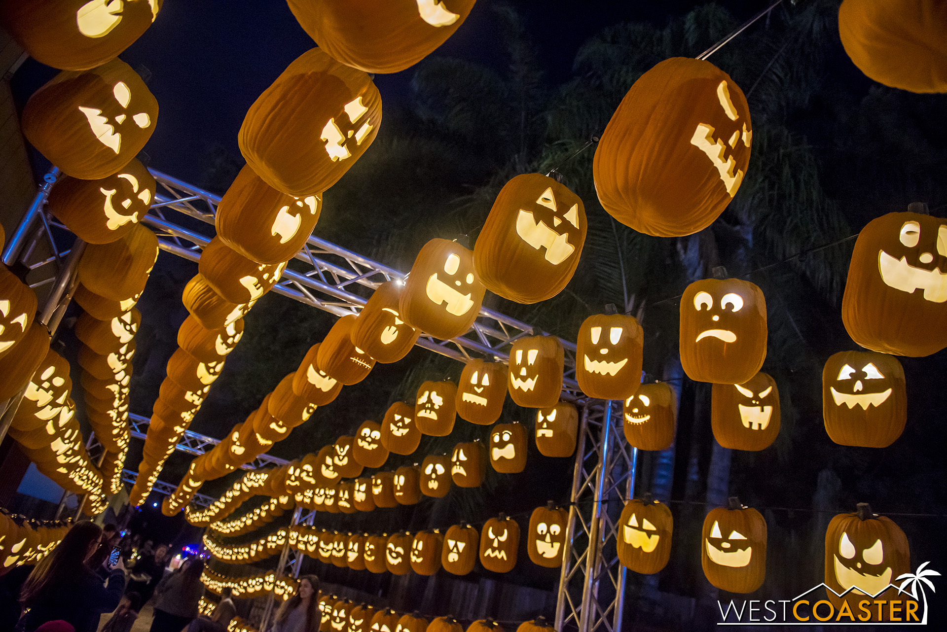A pumpkin tunnel kicks off the Pumpkin Walk main attraction of Pumpkin Nights.