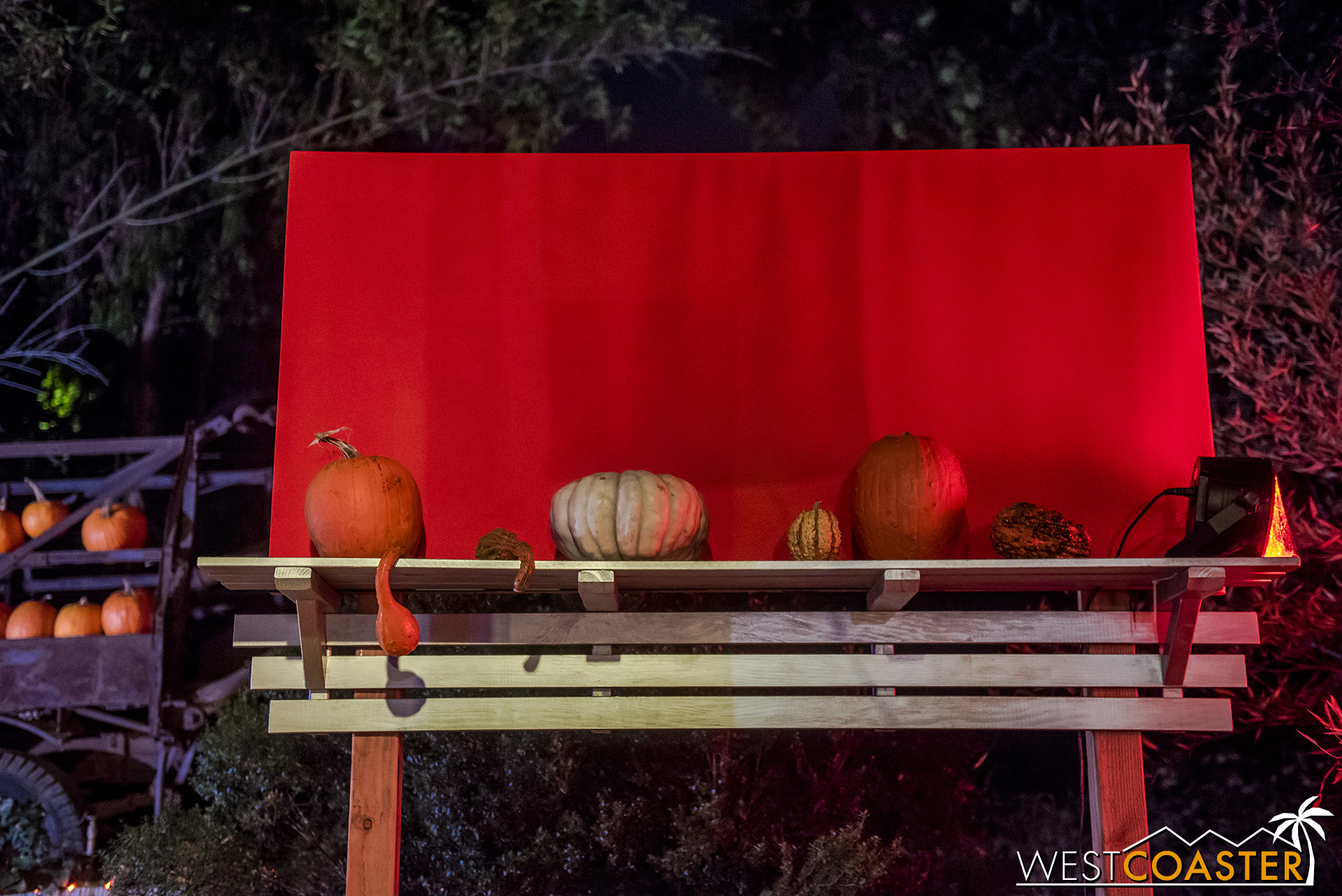 Pumpkins and a blank, orange billboard.