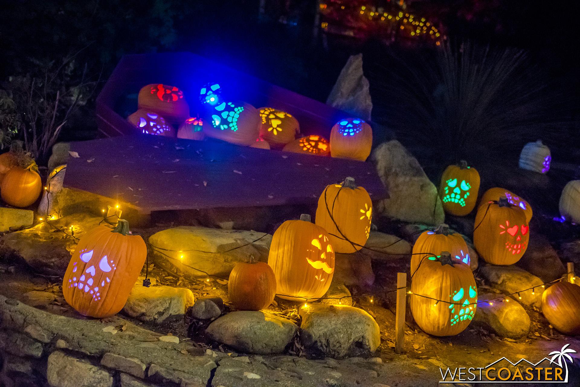 PumpkinNights-19_0308-C-PumpkinWalk-0037.jpg