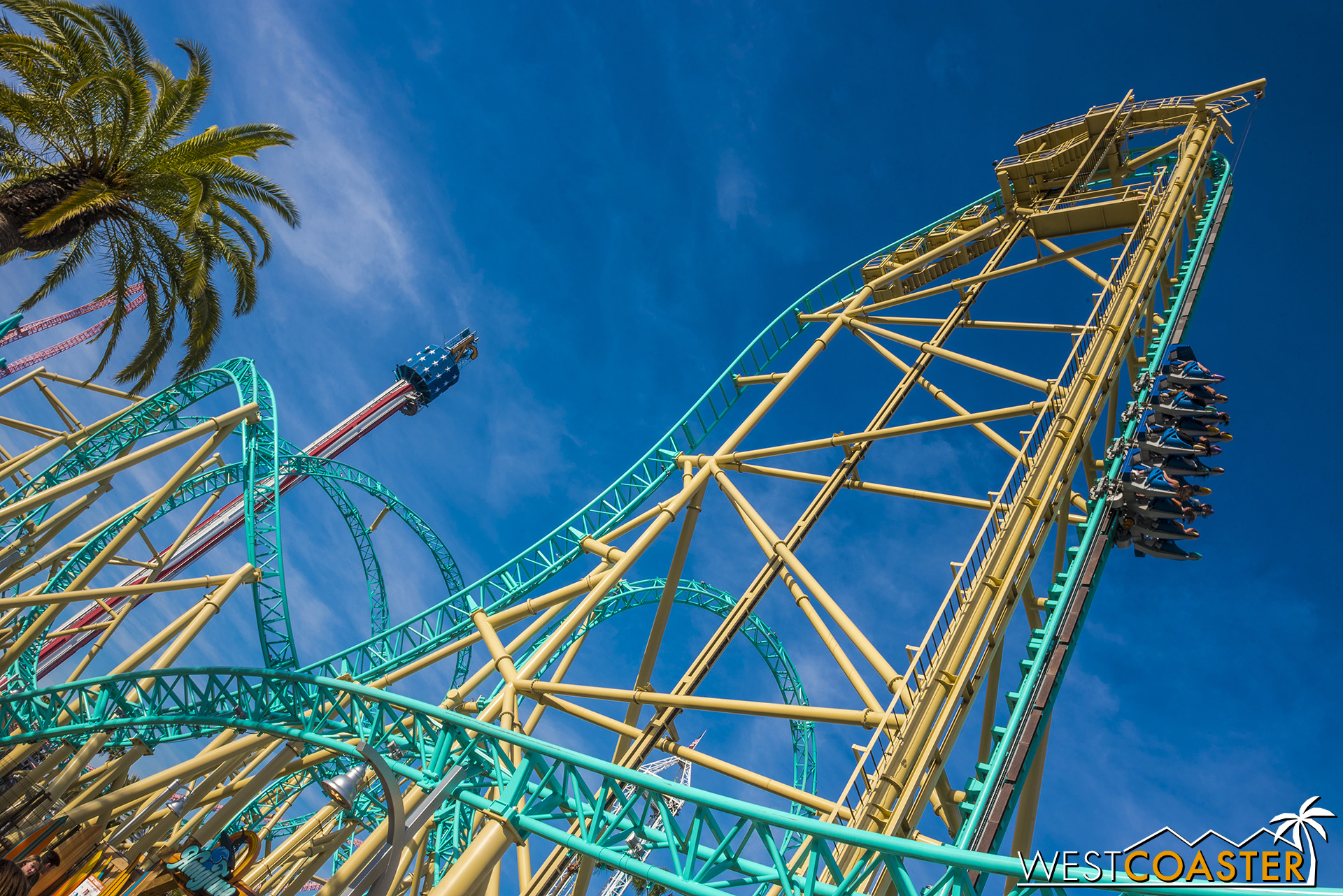 HangTime is close to turning 1 years old, and it's still incredibly photogenic!