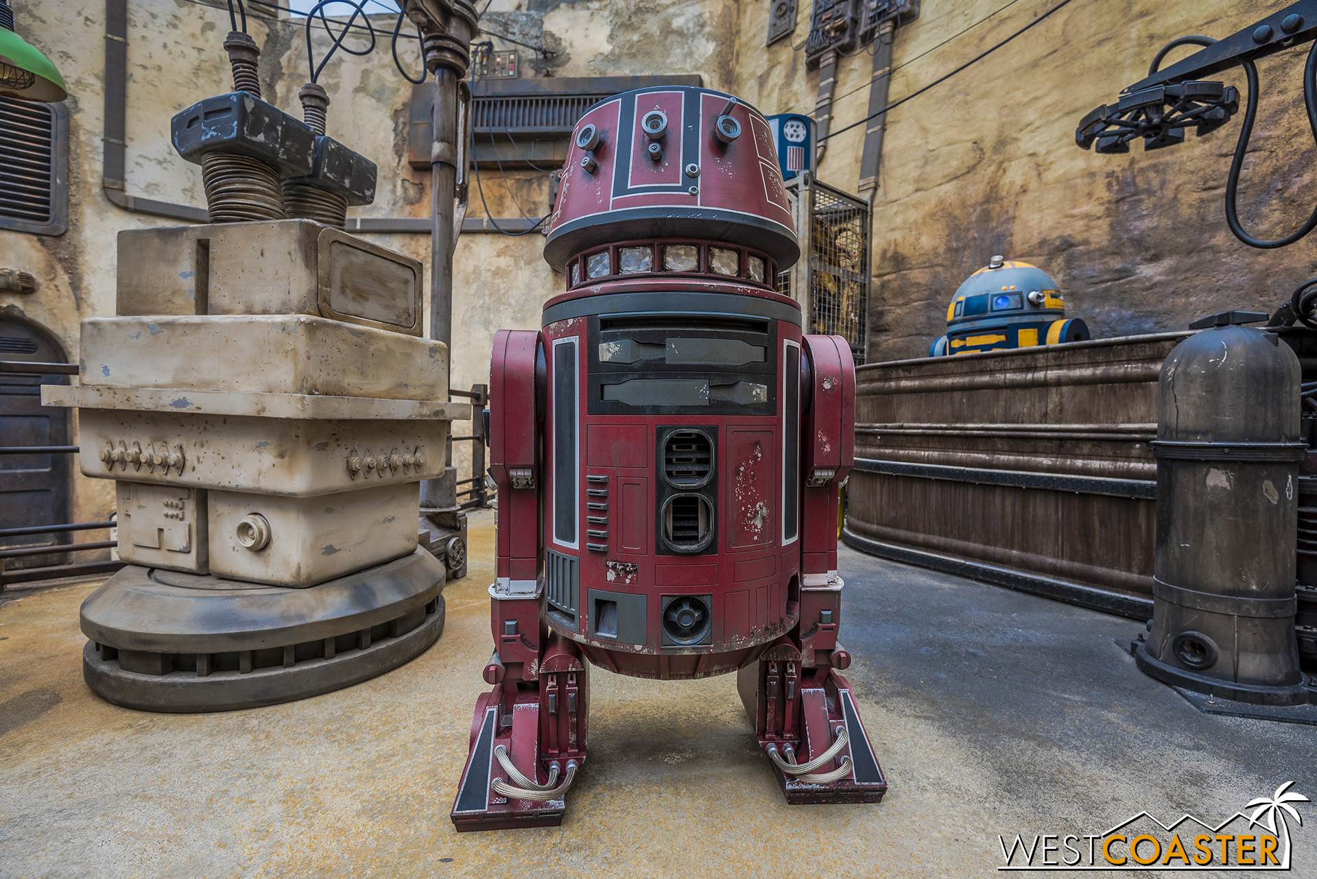 There are plenty of droids and photo ops in Batuu.