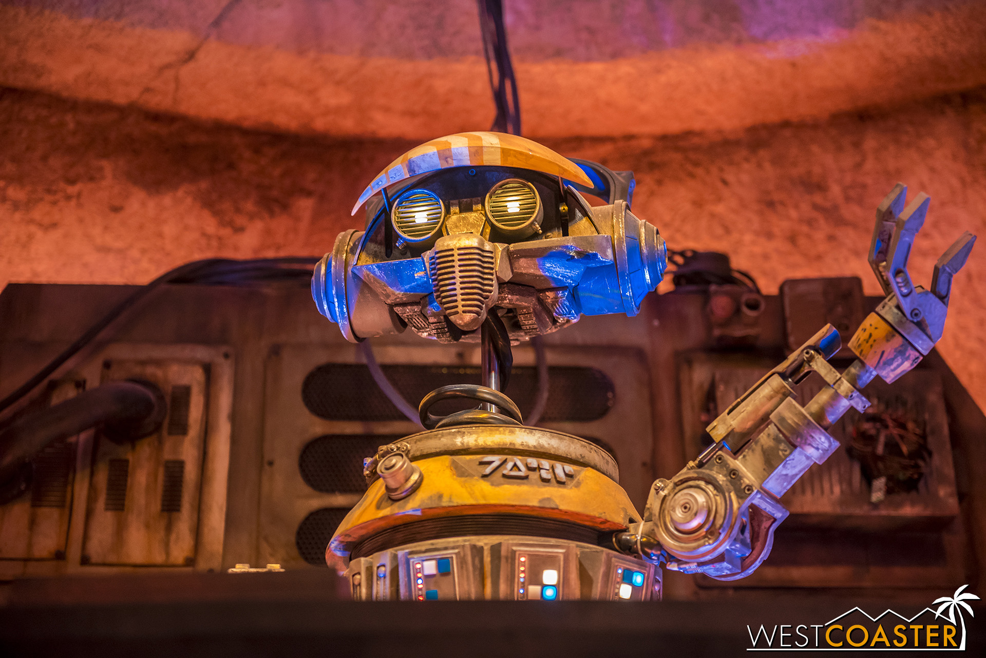 It's his first time spinning music, but he does a better job than his Star Tours run!