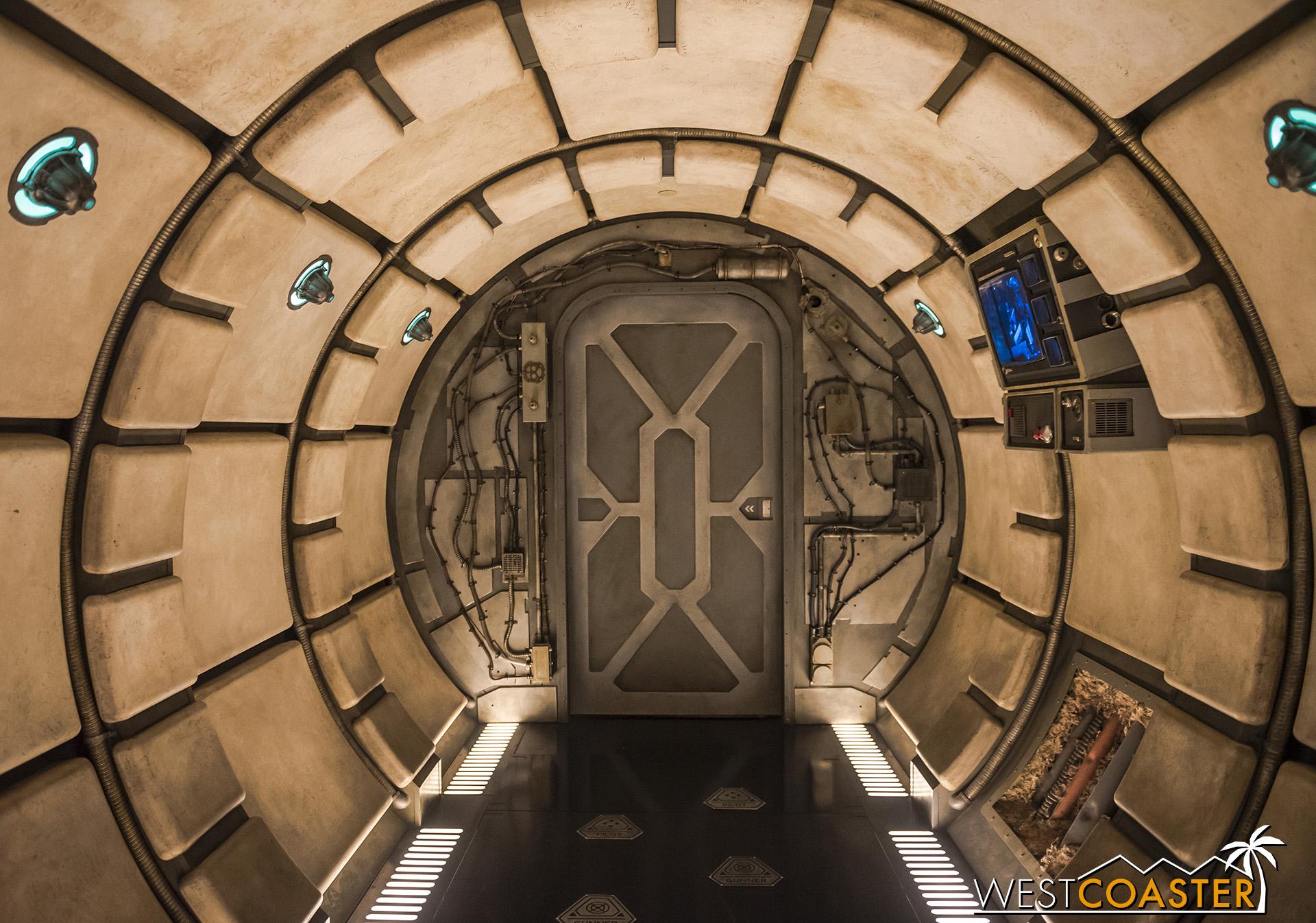 DLR-19_0606-C-Falcon-0007.jpg