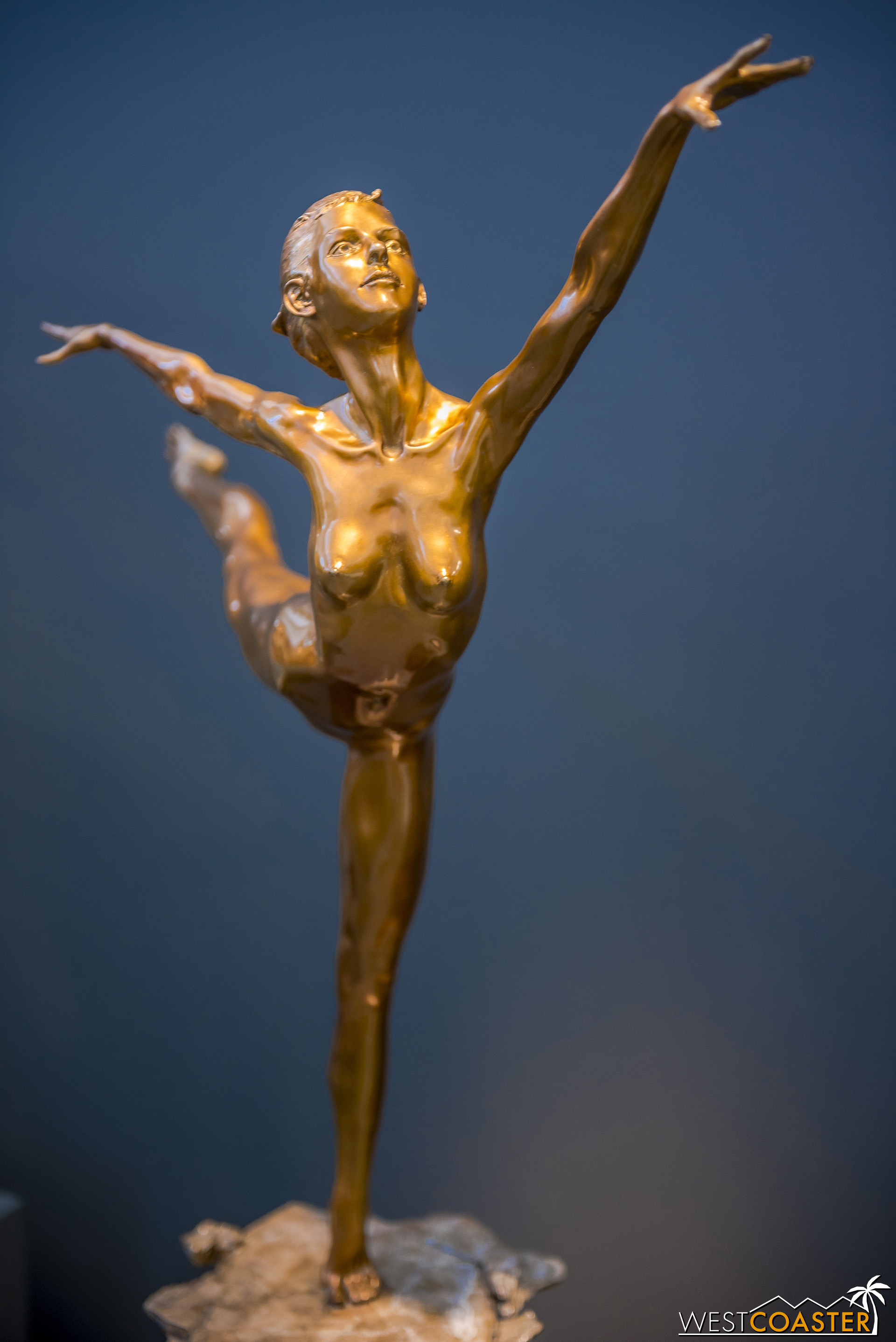 He enjoys capturing the elegance, composure, strength, and control of dancers.