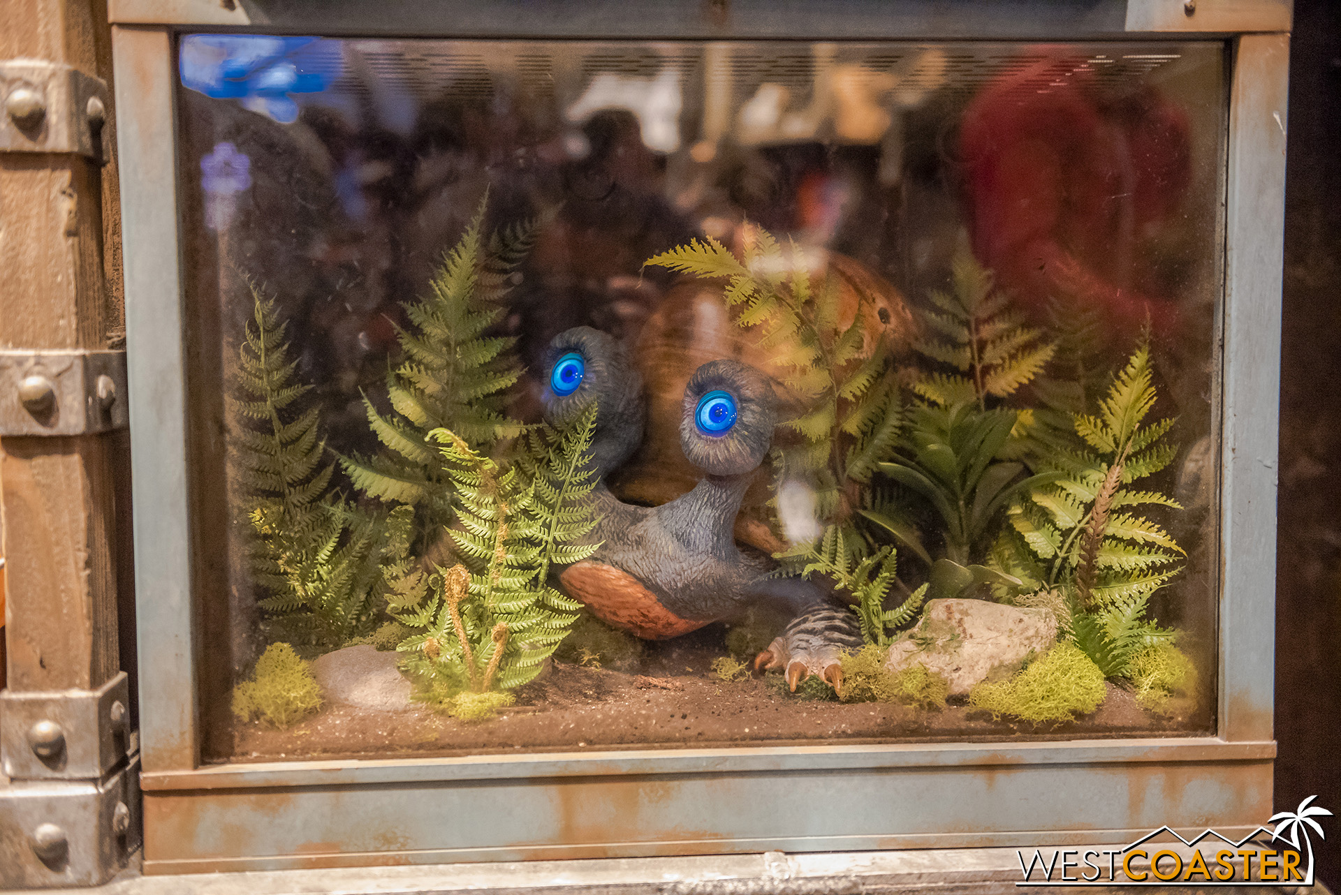The shop seems to double as a creature exhibit too.