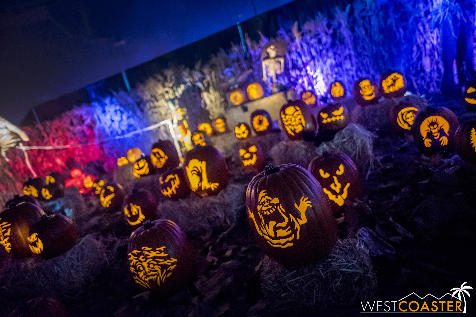 Wicked Pumpkin Hollow   was back again this year at Midsummer.