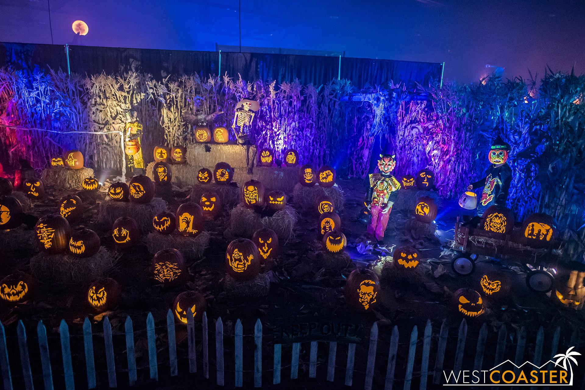MSS-19_0809-06-WickedPumpkinHollow-0003.jpg