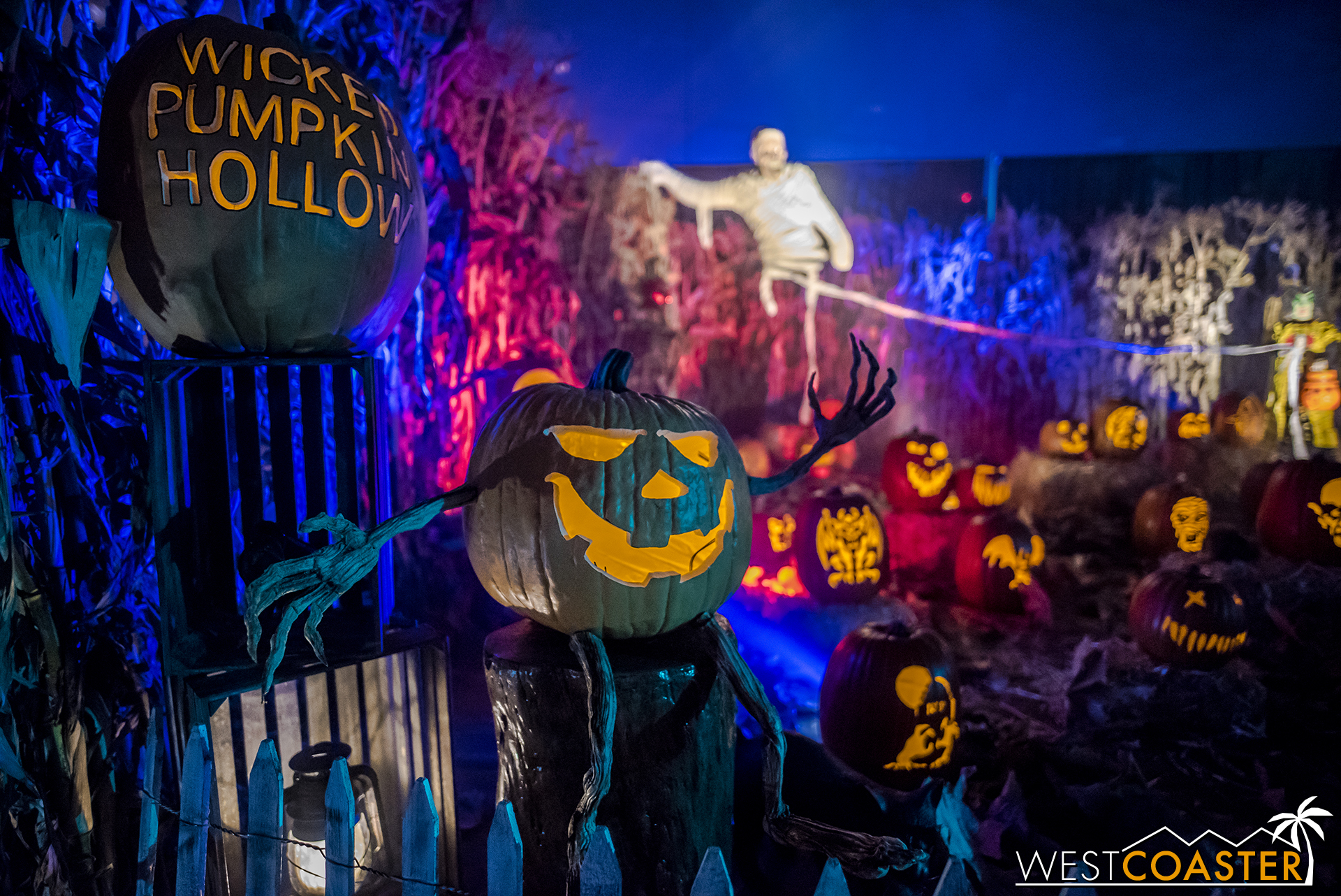 One of the most photogenic haunted yard displays out there is back for another year.
