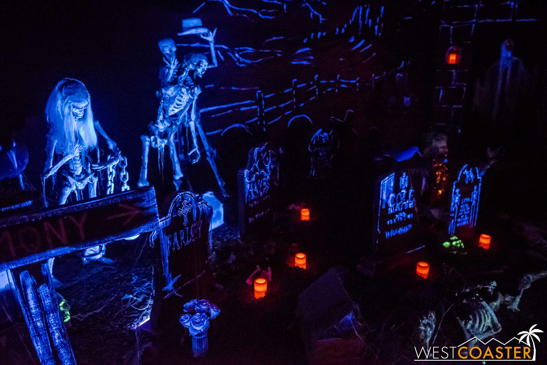 Reign of Terror does not allow  any  photography inside its actual maze, so the following are photos only from its queue.