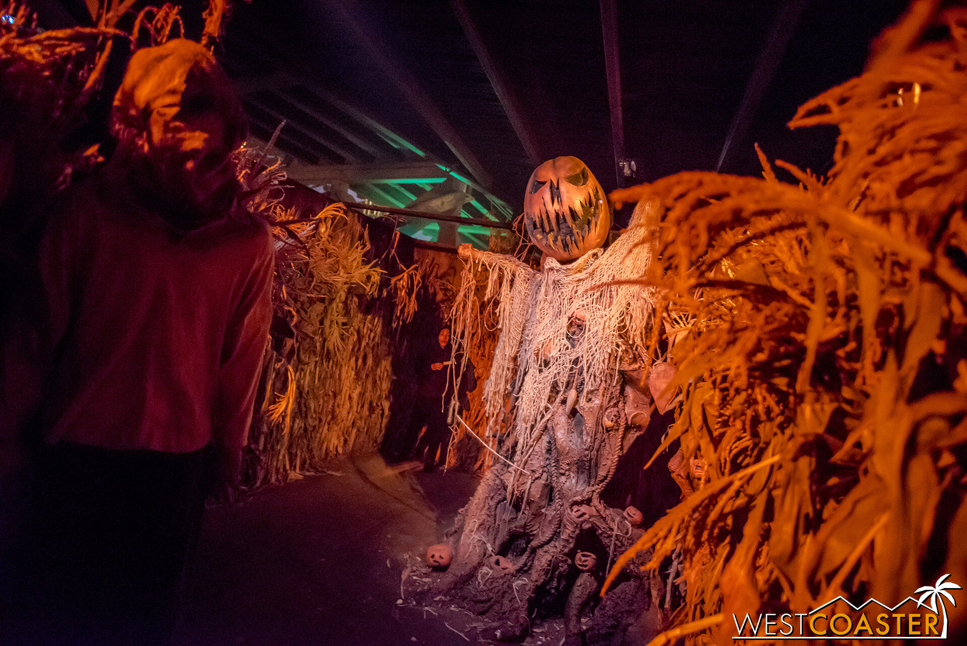 Pumpkin Eater continues the autumn harvest… of humans.