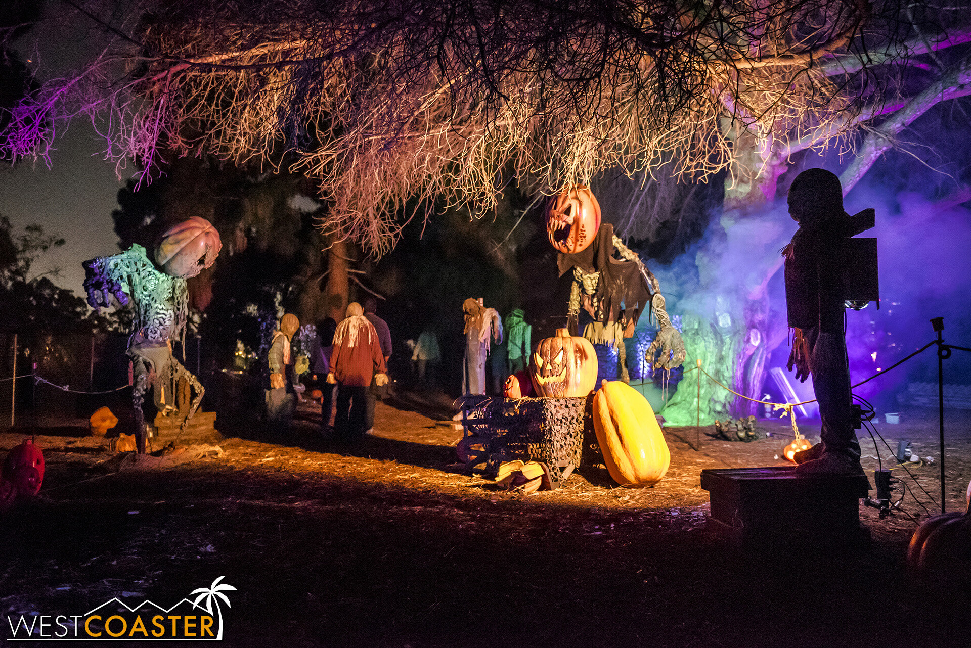 A jack-o-lantern hollow is one of several areas not patterned after IP's.