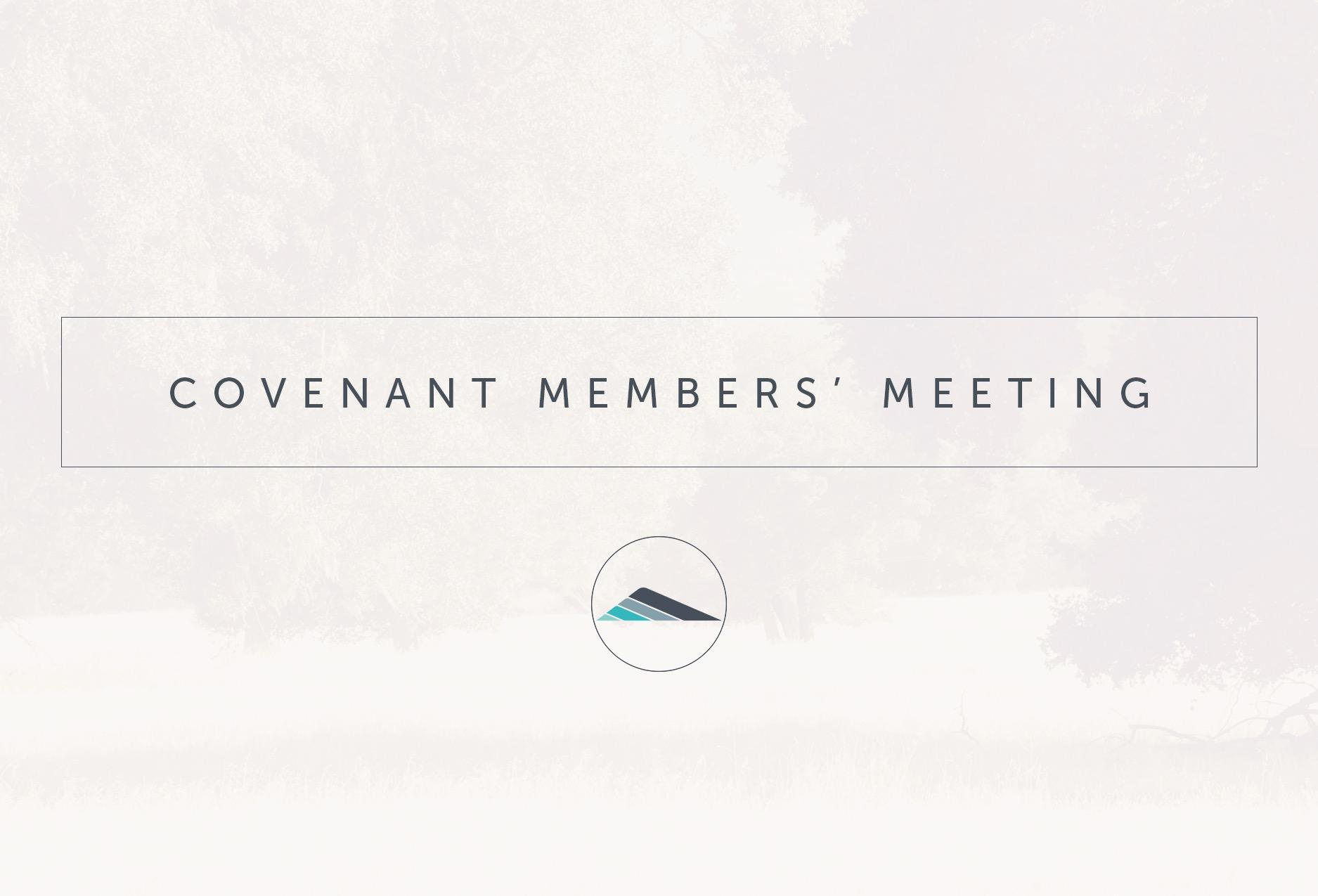 Members' Meeting graphic.jpg
