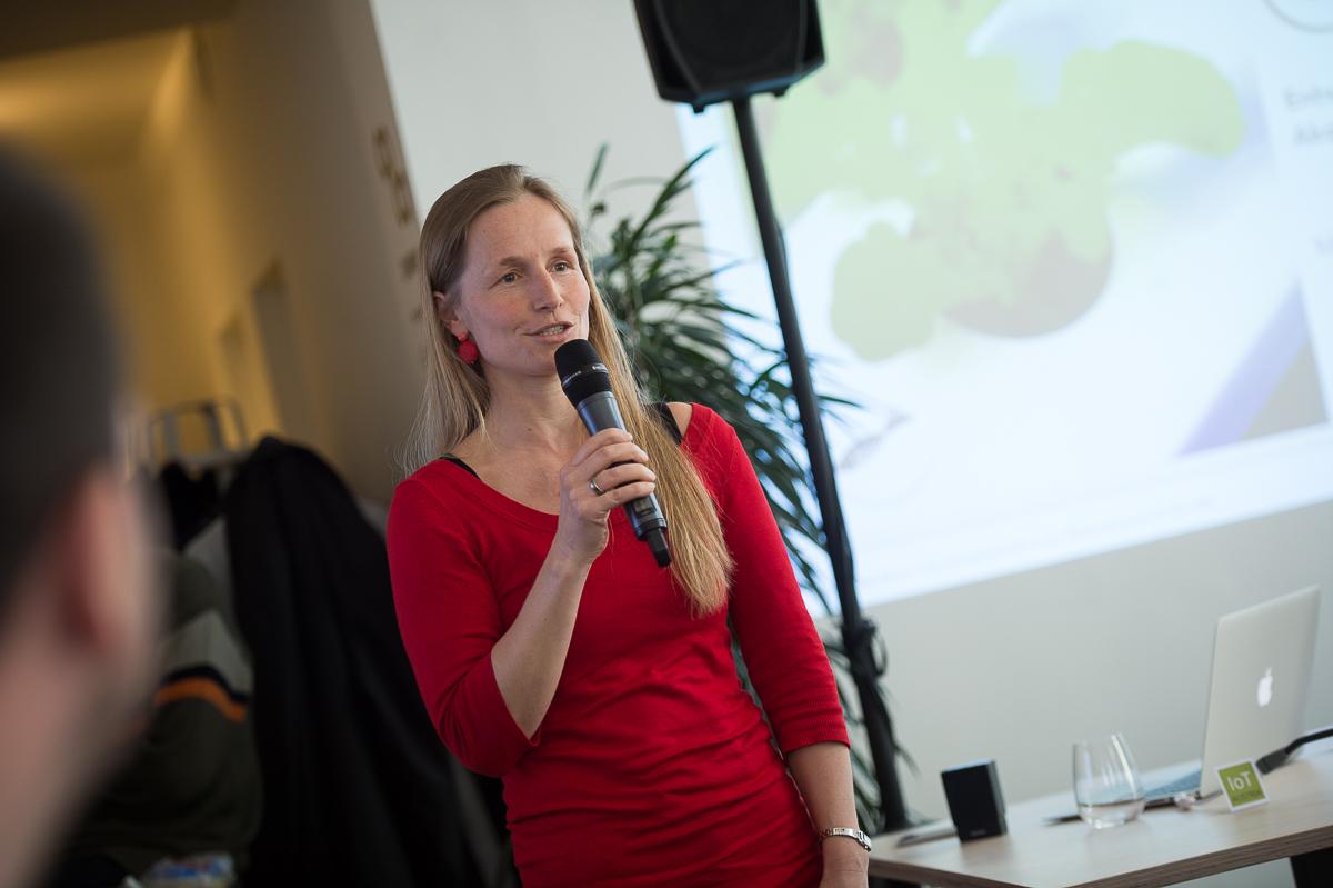 Agnes Hofstätter, Greiner Gruppe
