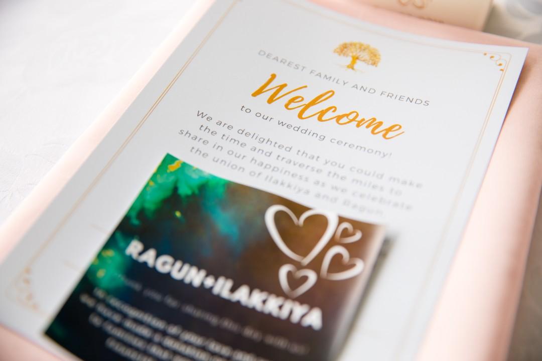 Ilakkiya & Ragun - Wedding & Reception - Edited-272.jpg