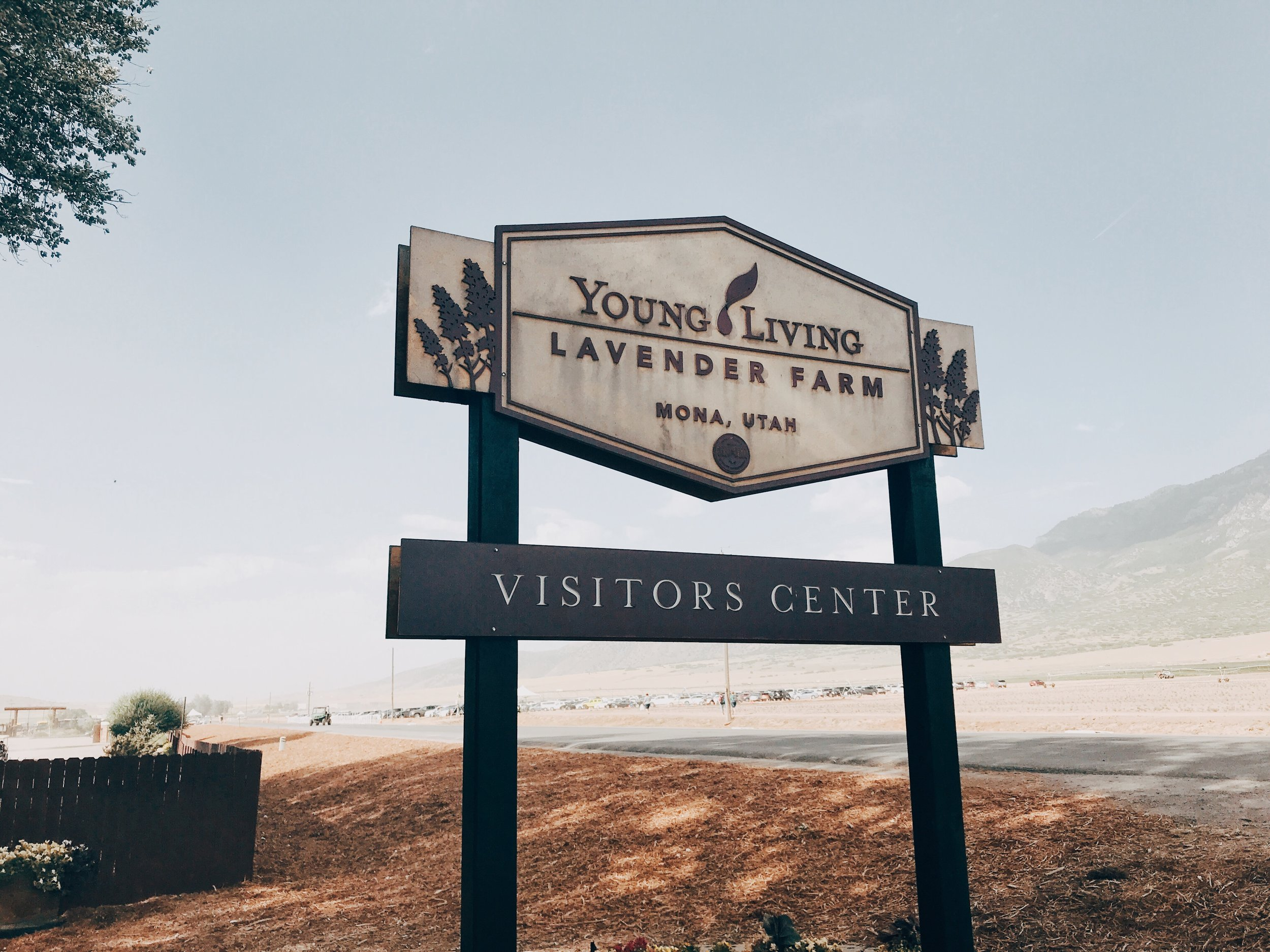 Anyone can visit any of Young Living's farms without an appointment…just visit during business hours!