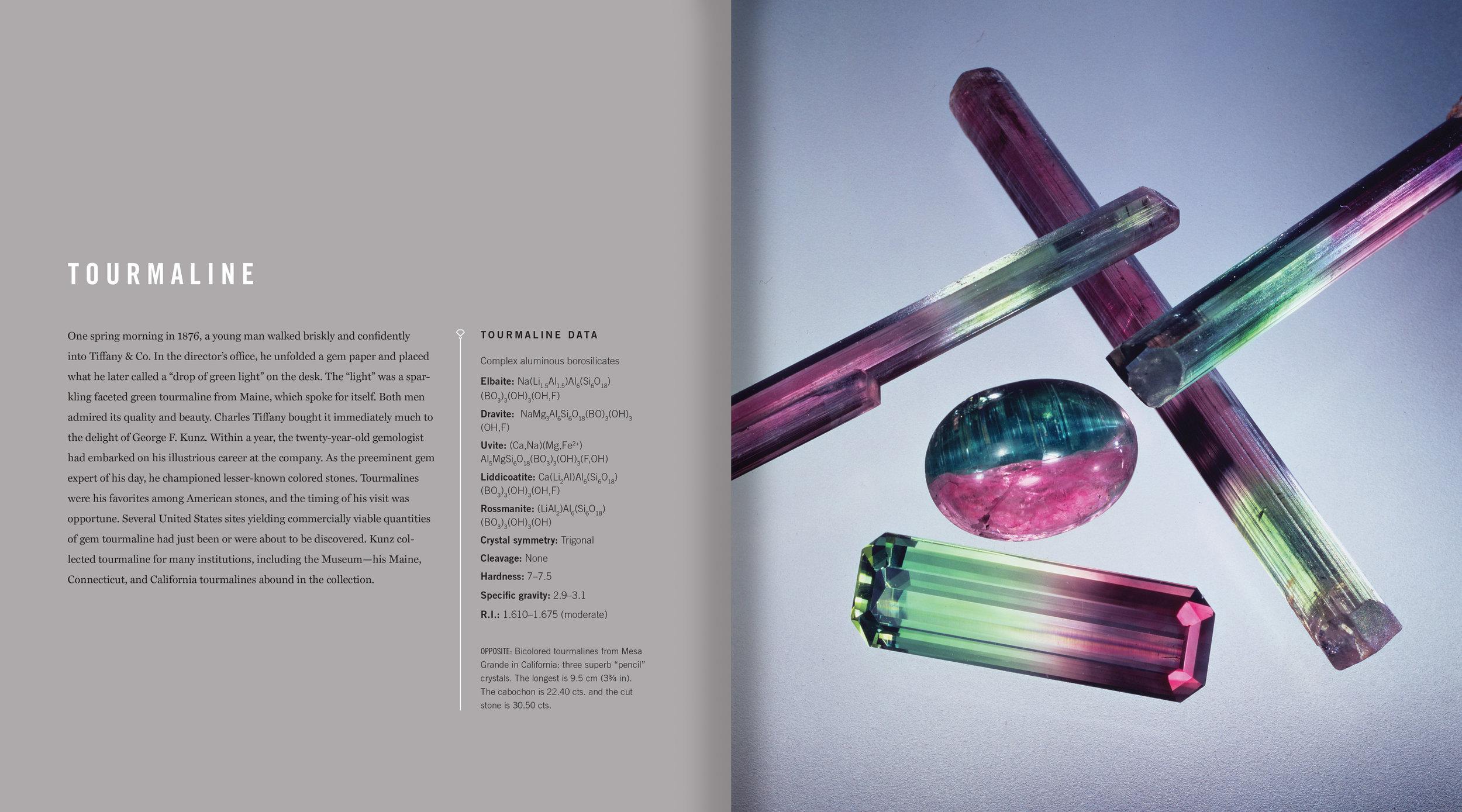 Gems-int-8.jpg