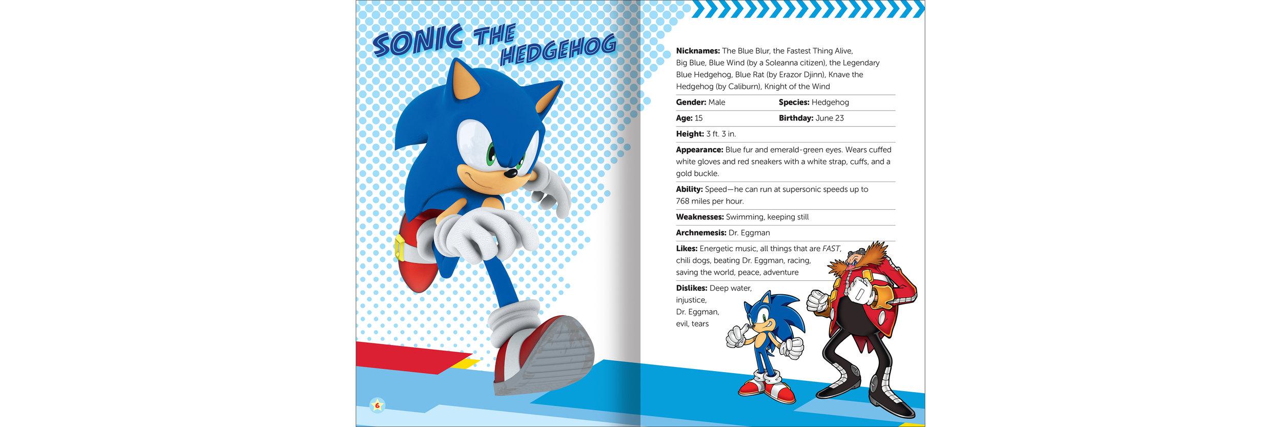 Sonic Char-1-int.jpg