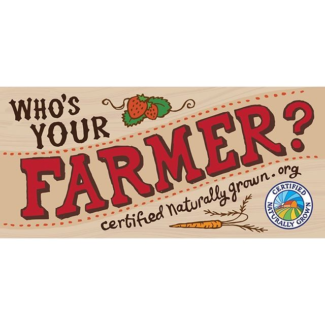 Bumper sticker design for Certified Naturally Grown. Hand lettering and illustration by Fabia. @cngfarming . . . #graphicdesign #logodesign #bumpersticker #identitysystems #reportdesign #posterdesign #magazinedesign #patterndesign #design #womanownedbusiness #girlboss #typography #illustration #eatlocal #farmer #lettering #berries #localbusiness #ulstercountyny #hudsonvalley #hudsonvalleydesigner  #hudsonvalleycreative #ulstercounty #stoneridge #motherdaughter