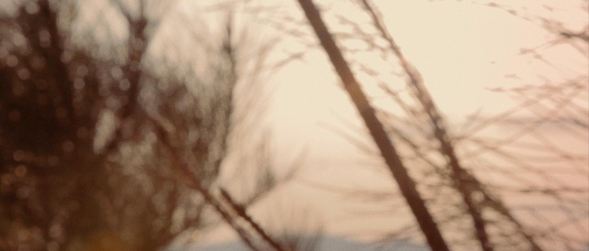 banner_004.jpg