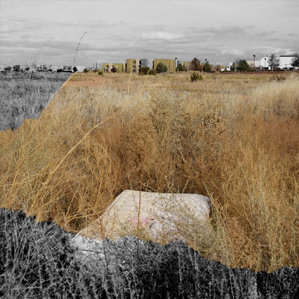 _NIK2487-adjusted-cropped2-HT-web.jpg