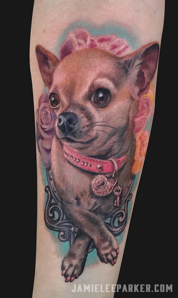 Girly Chihuahua